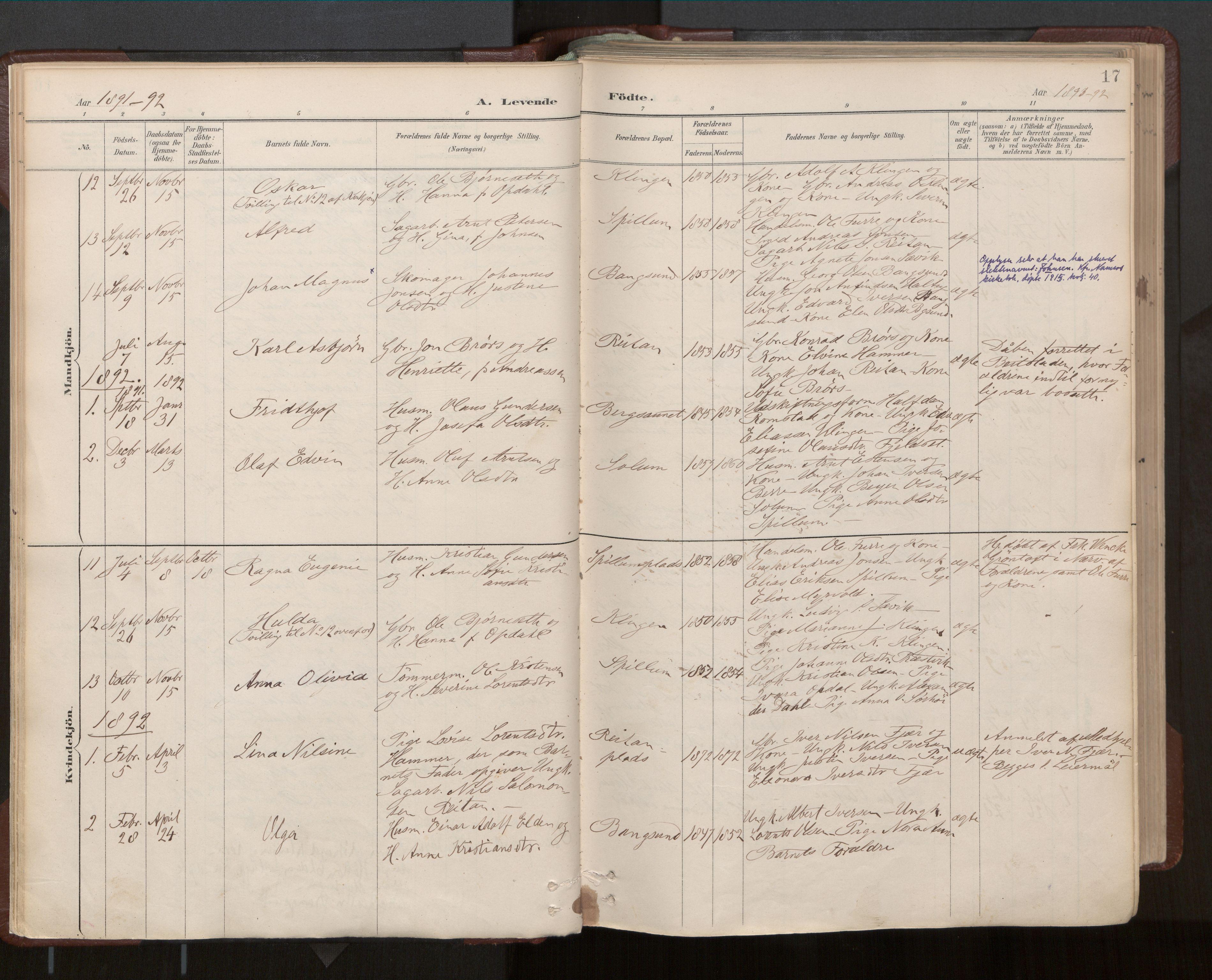 SAT, Ministerialprotokoller, klokkerbøker og fødselsregistre - Nord-Trøndelag, 770/L0589: Ministerialbok nr. 770A03, 1887-1929, s. 17