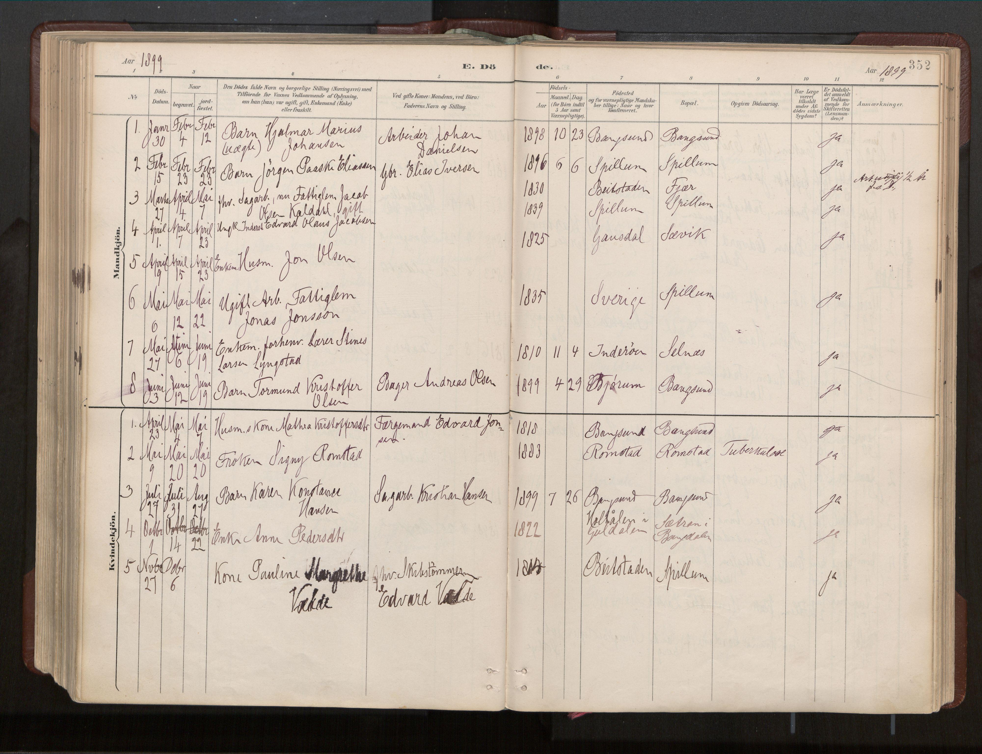 SAT, Ministerialprotokoller, klokkerbøker og fødselsregistre - Nord-Trøndelag, 770/L0589: Ministerialbok nr. 770A03, 1887-1929, s. 352