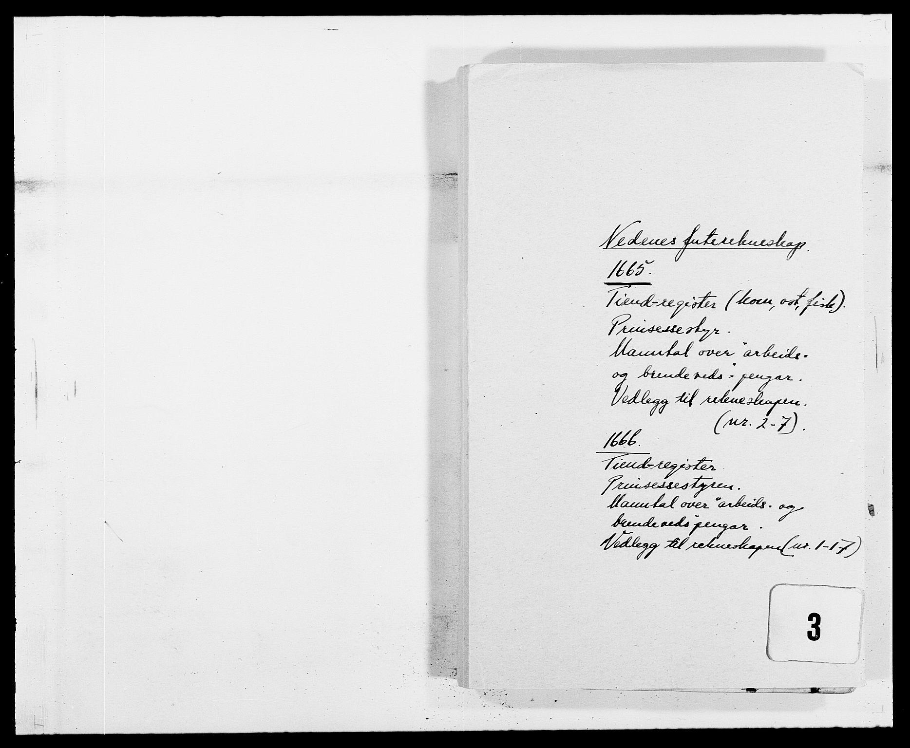 RA, Rentekammeret inntil 1814, Reviderte regnskaper, Fogderegnskap, R39/L2296: Fogderegnskap Nedenes, 1664-1666, s. 326