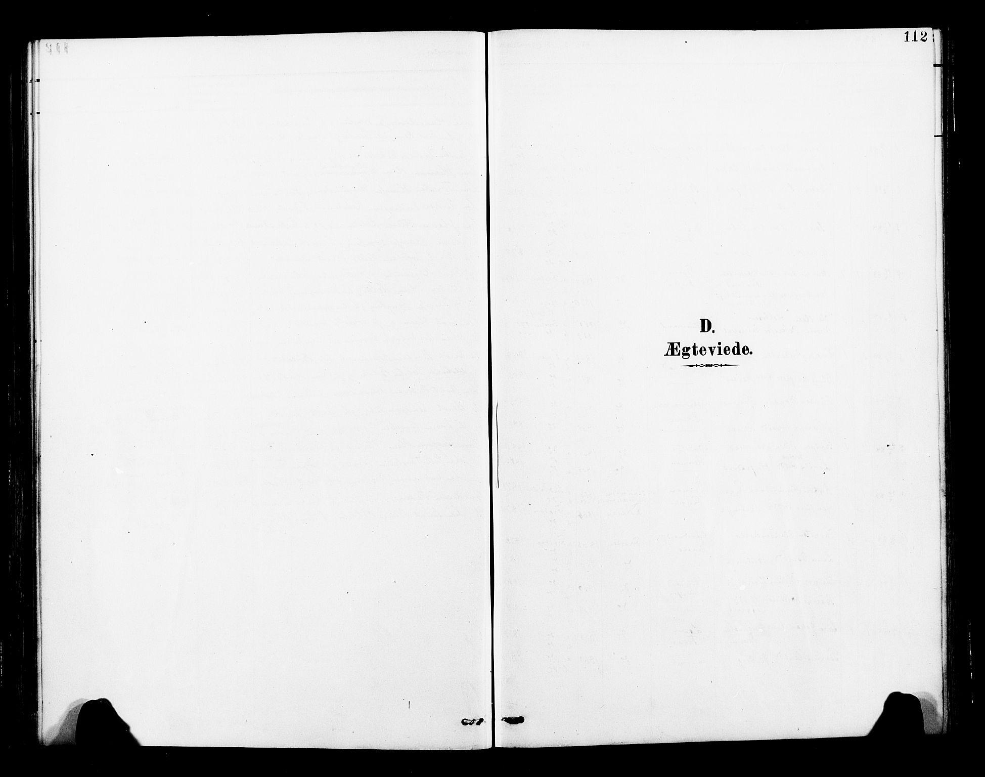 SAT, Ministerialprotokoller, klokkerbøker og fødselsregistre - Nord-Trøndelag, 713/L0121: Ministerialbok nr. 713A10, 1888-1898, s. 112