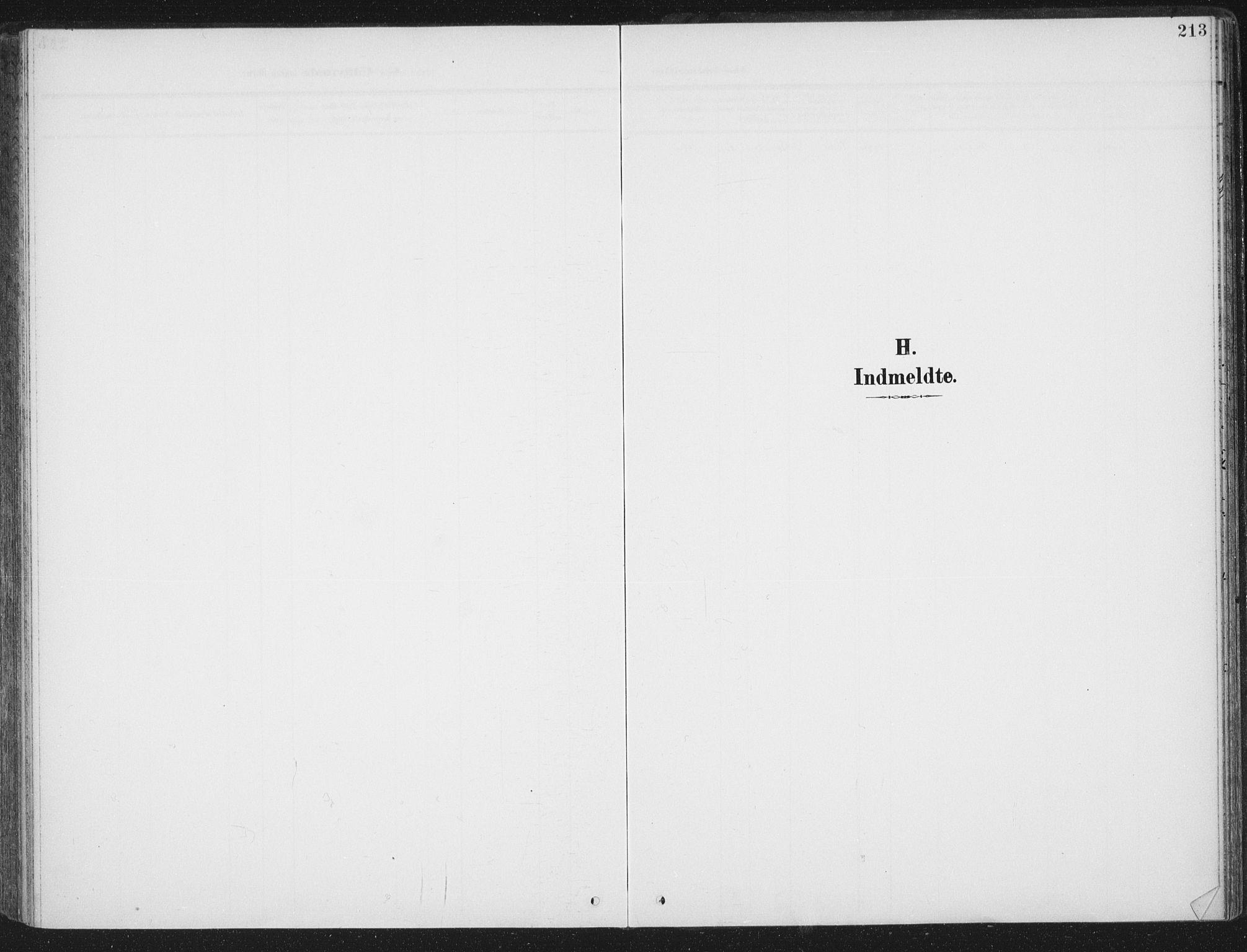 SAT, Ministerialprotokoller, klokkerbøker og fødselsregistre - Sør-Trøndelag, 657/L0709: Ministerialbok nr. 657A10, 1905-1919, s. 213