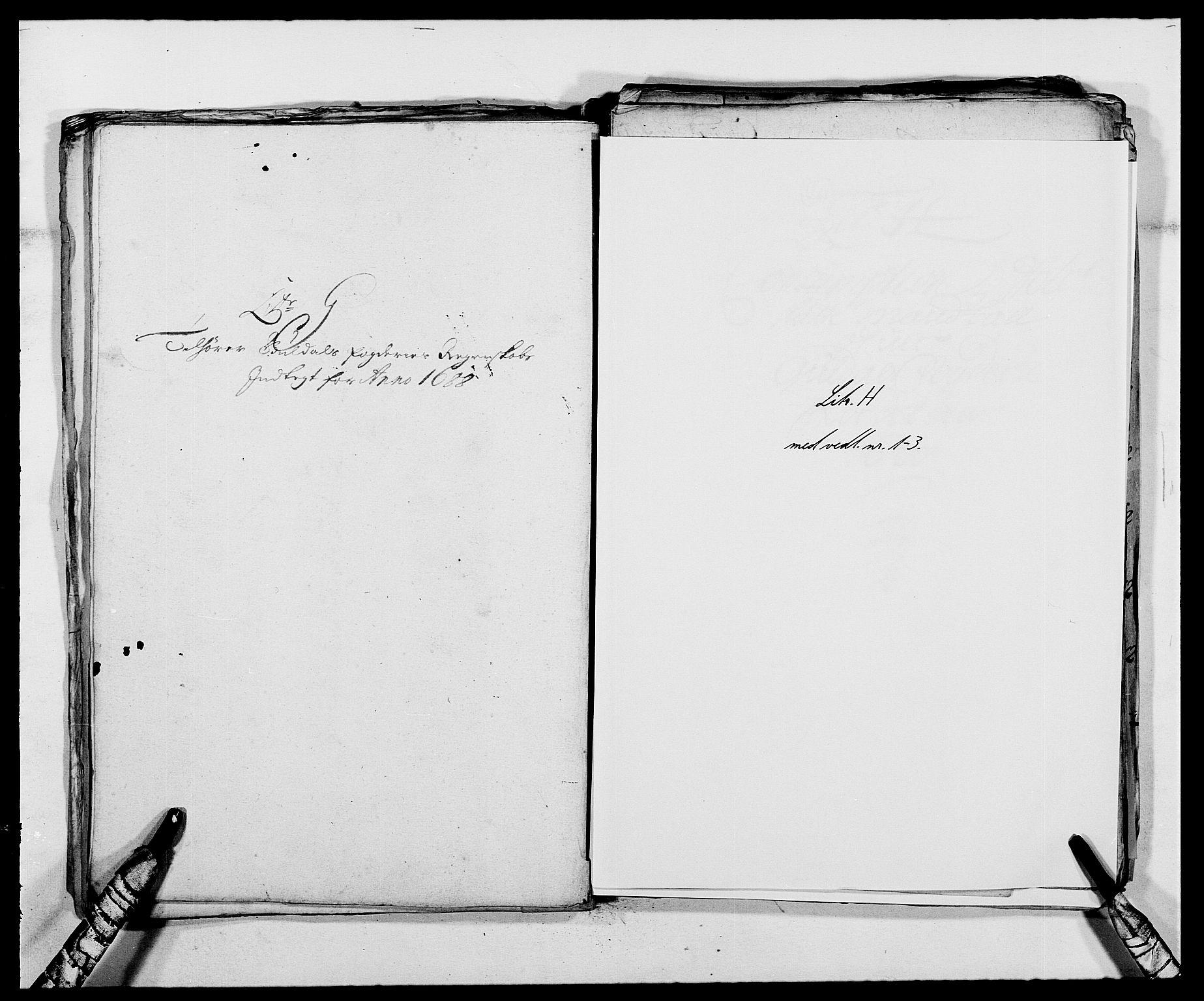 RA, Rentekammeret inntil 1814, Reviderte regnskaper, Fogderegnskap, R59/L3939: Fogderegnskap Gauldal, 1687-1688, s. 228