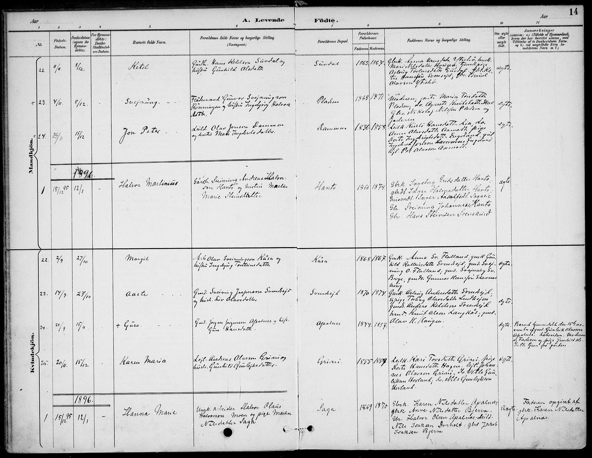 SAKO, Lunde kirkebøker, F/Fa/L0003: Ministerialbok nr. I 3, 1893-1902, s. 14