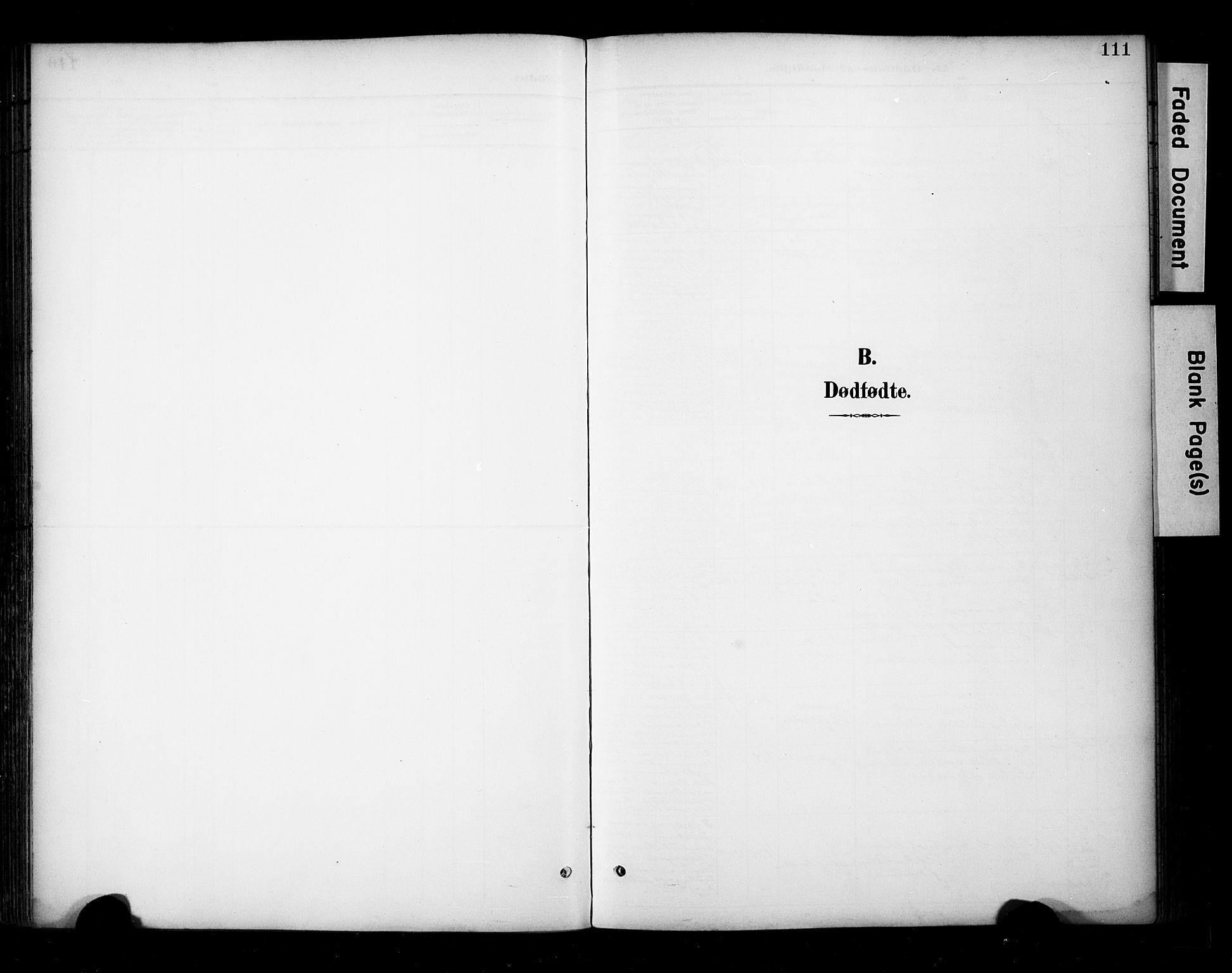 SAT, Ministerialprotokoller, klokkerbøker og fødselsregistre - Sør-Trøndelag, 681/L0936: Ministerialbok nr. 681A14, 1899-1908, s. 111