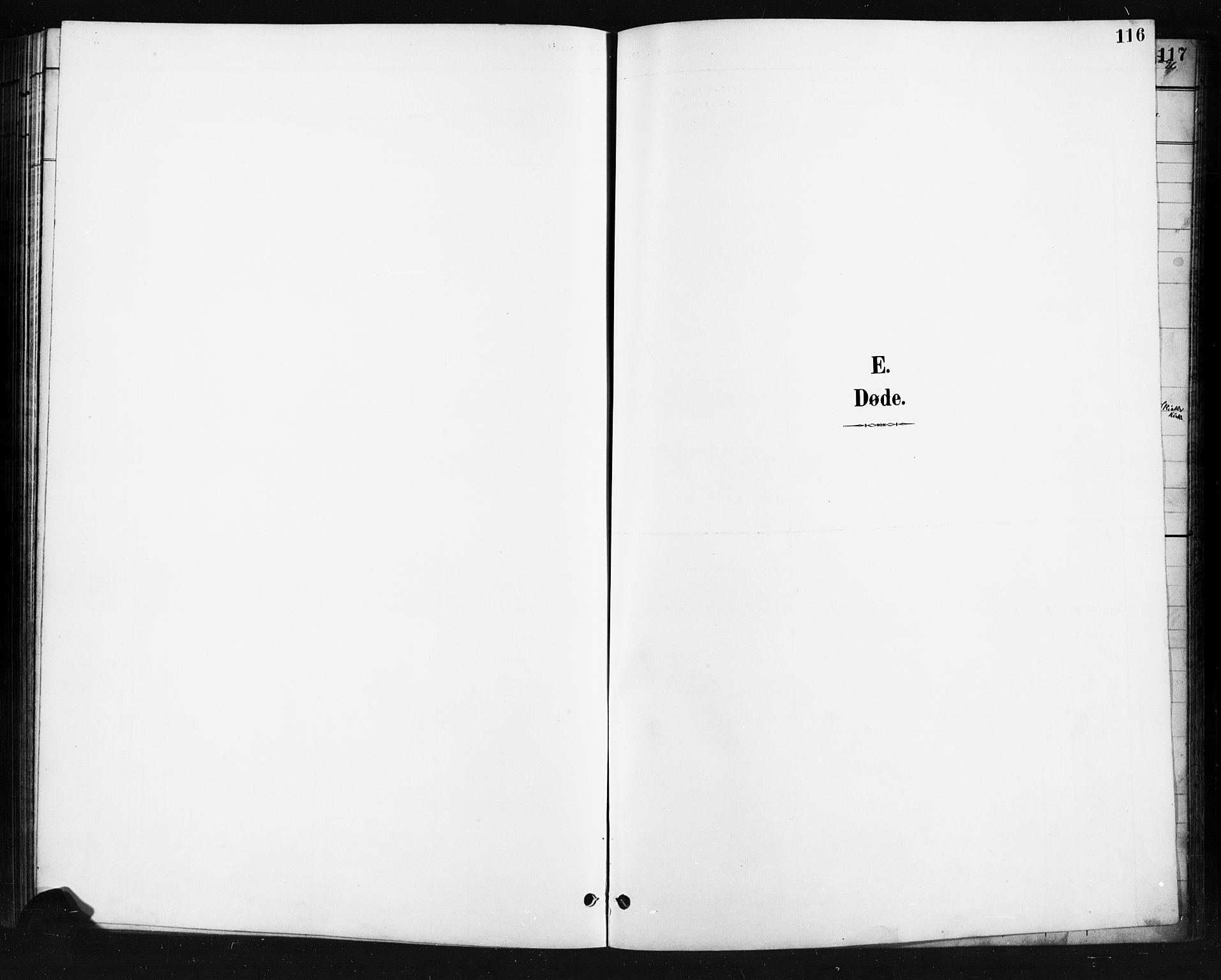 SAH, Skjåk prestekontor, Klokkerbok nr. 4, 1895-1921, s. 116