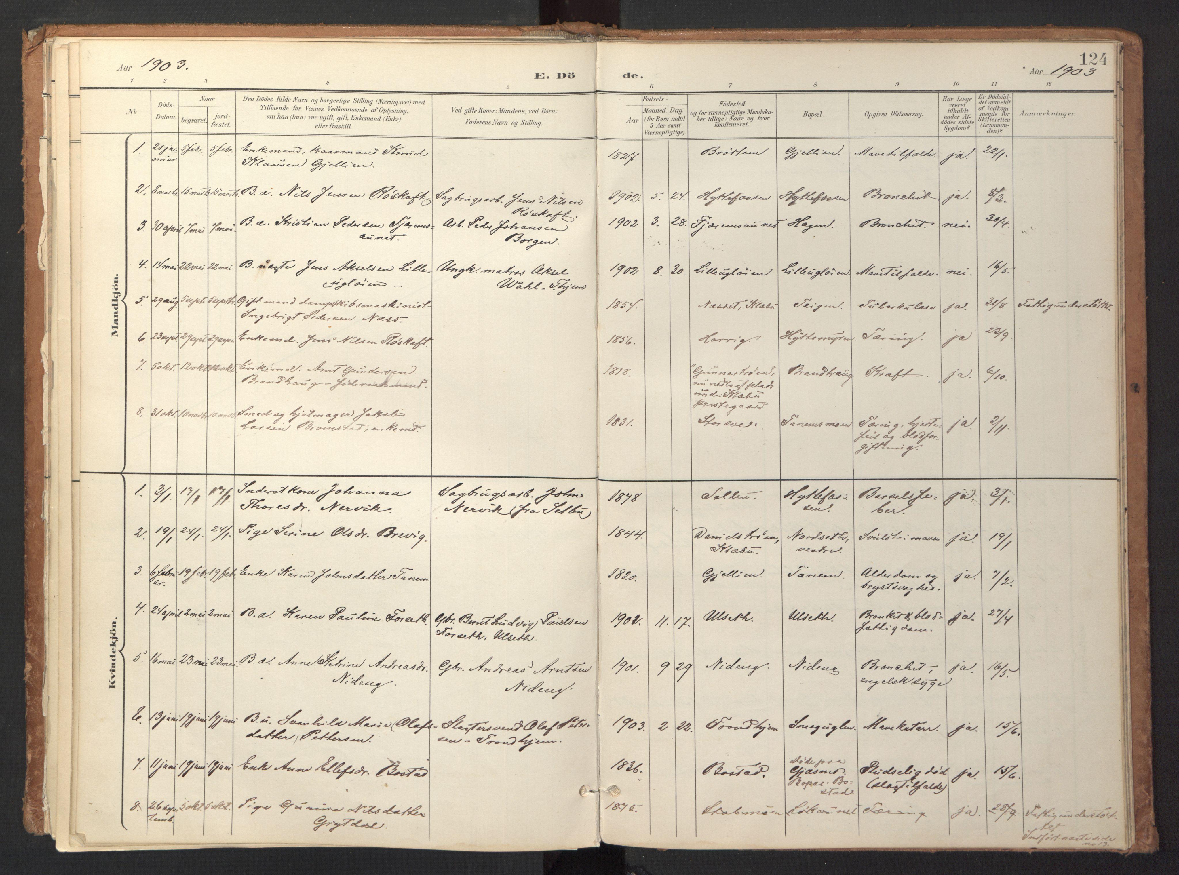 SAT, Ministerialprotokoller, klokkerbøker og fødselsregistre - Sør-Trøndelag, 618/L0448: Ministerialbok nr. 618A11, 1898-1916, s. 124