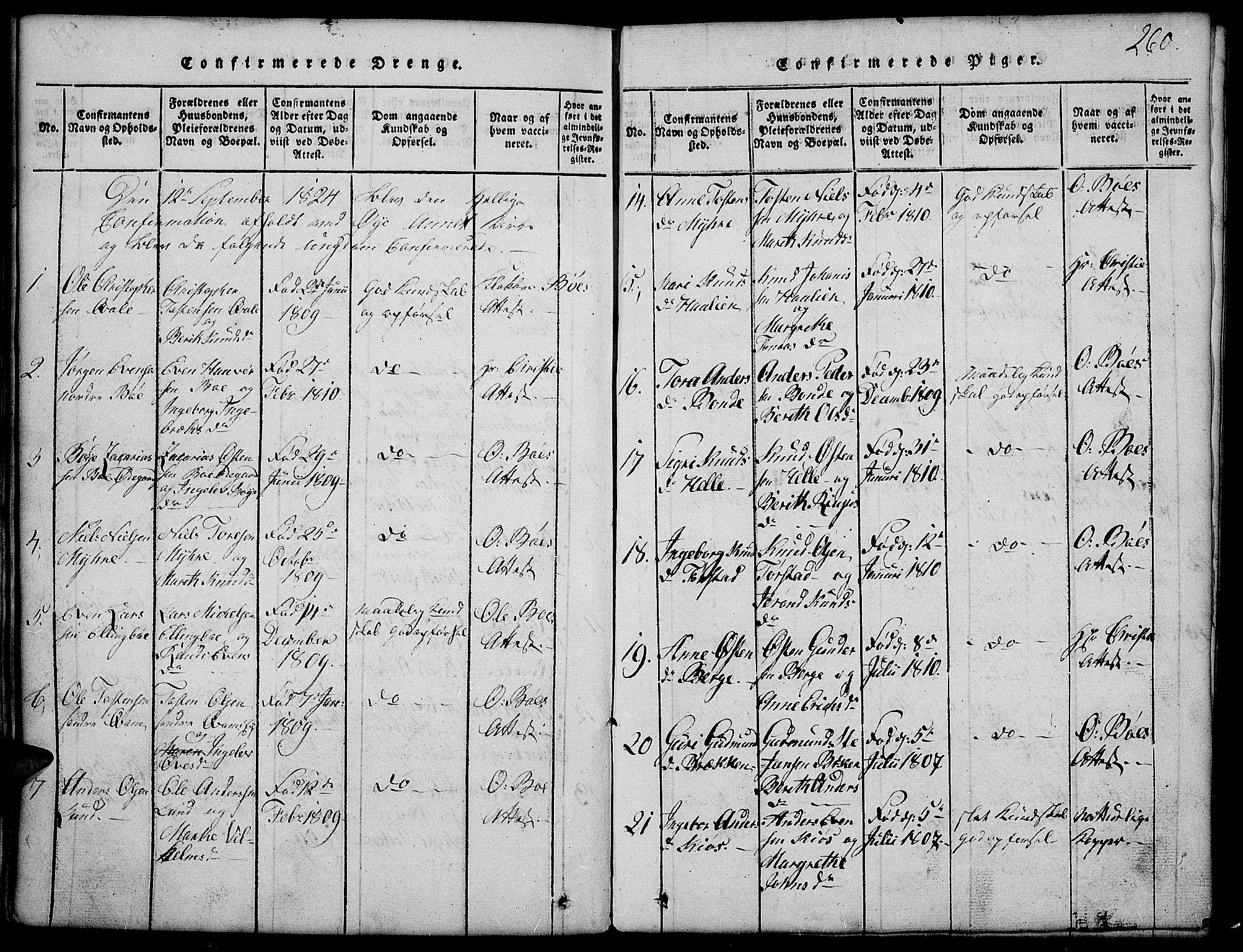 SAH, Vang prestekontor, Valdres, Klokkerbok nr. 2, 1814-1889, s. 260