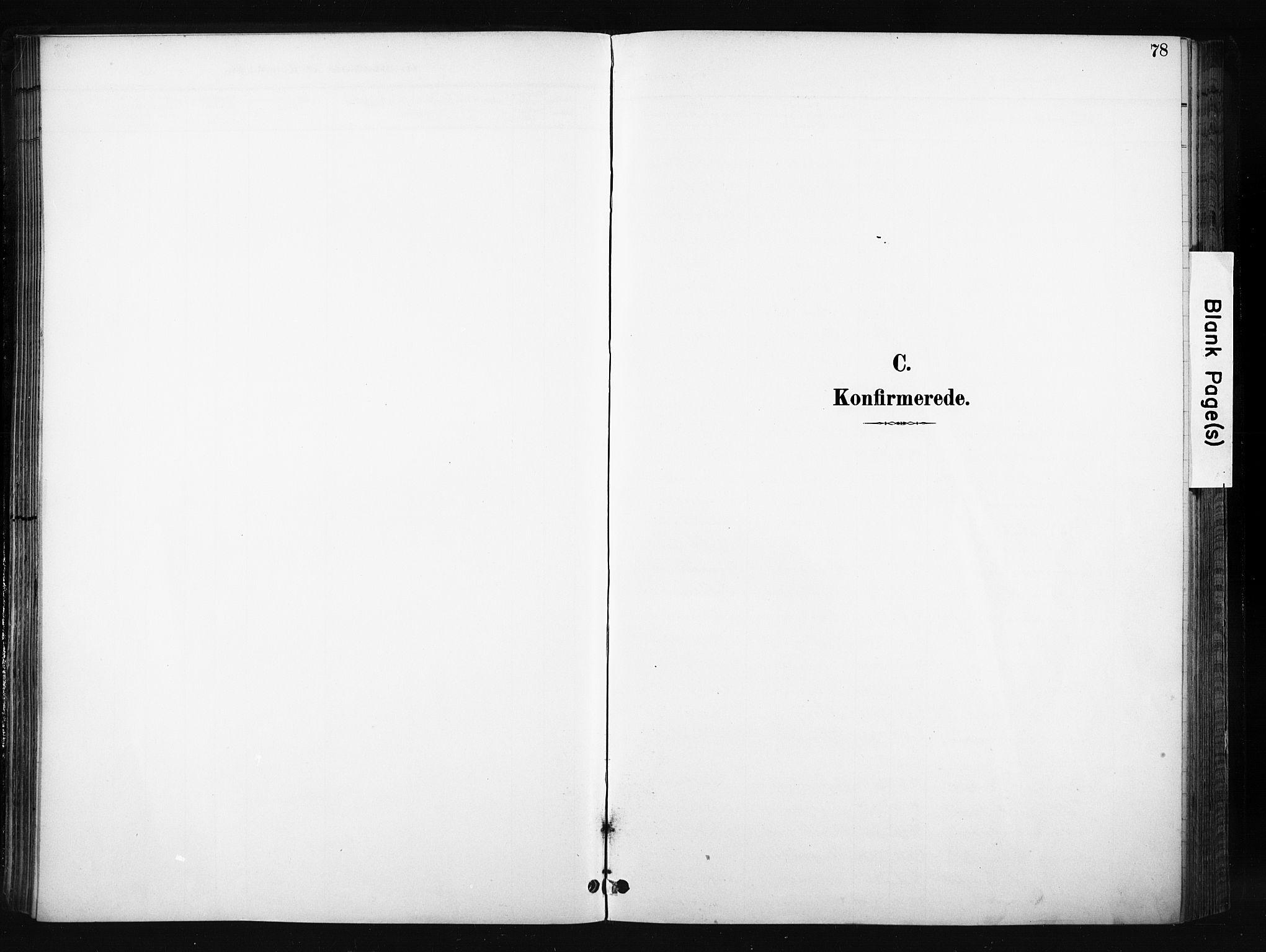 SAH, Søndre Land prestekontor, K/L0004: Ministerialbok nr. 4, 1895-1904, s. 78