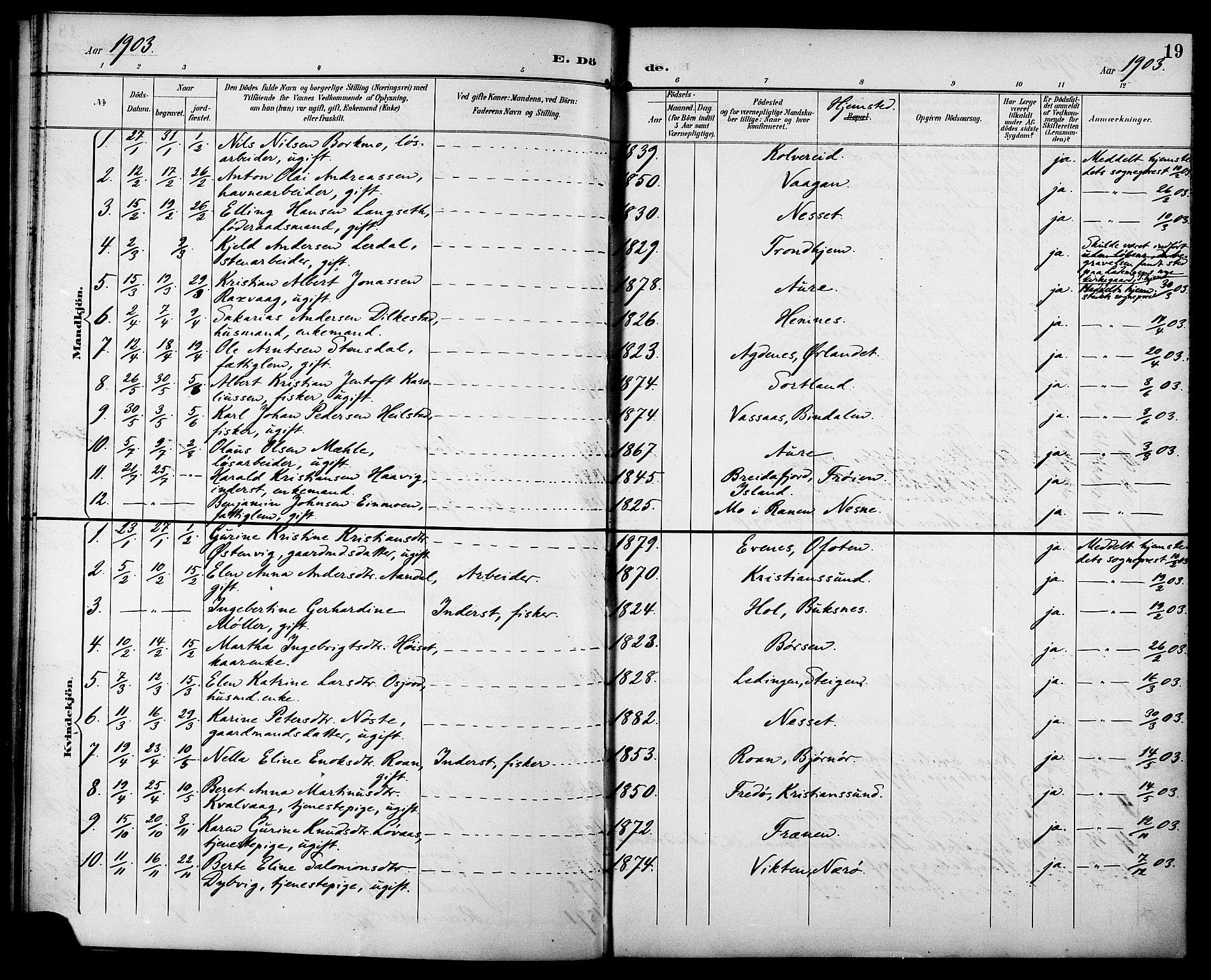 SAT, Ministerialprotokoller, klokkerbøker og fødselsregistre - Sør-Trøndelag, 629/L0486: Ministerialbok nr. 629A02, 1894-1919, s. 19