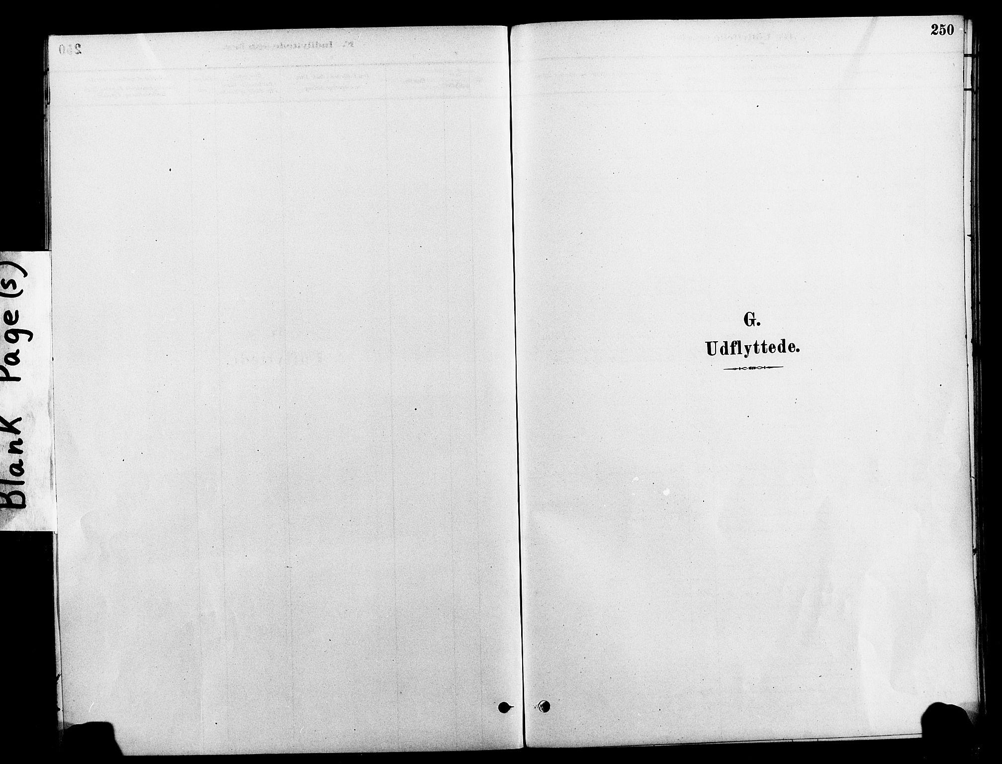 SAT, Ministerialprotokoller, klokkerbøker og fødselsregistre - Nord-Trøndelag, 712/L0100: Ministerialbok nr. 712A01, 1880-1900, s. 250