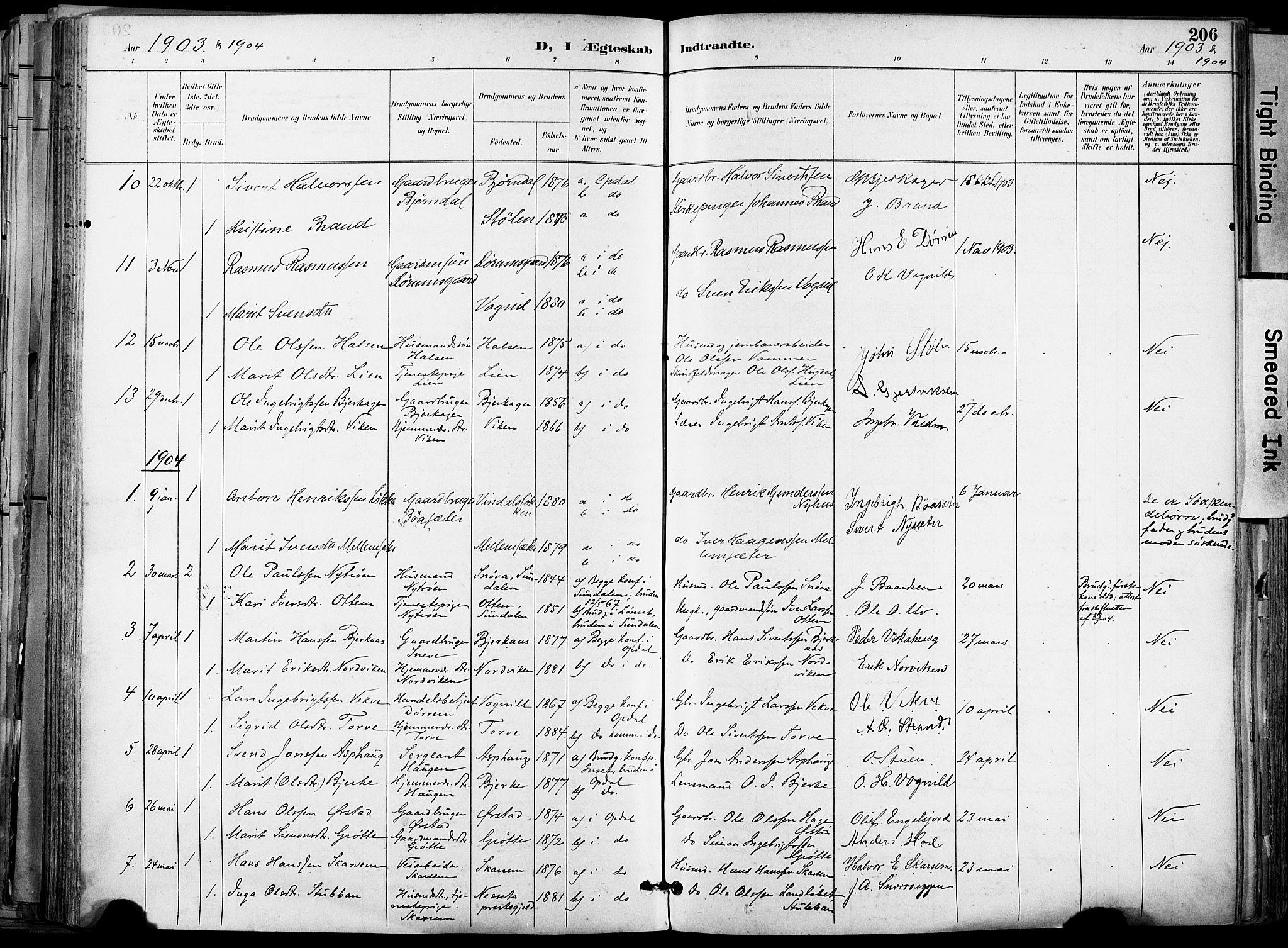 SAT, Ministerialprotokoller, klokkerbøker og fødselsregistre - Sør-Trøndelag, 678/L0902: Ministerialbok nr. 678A11, 1895-1911, s. 206