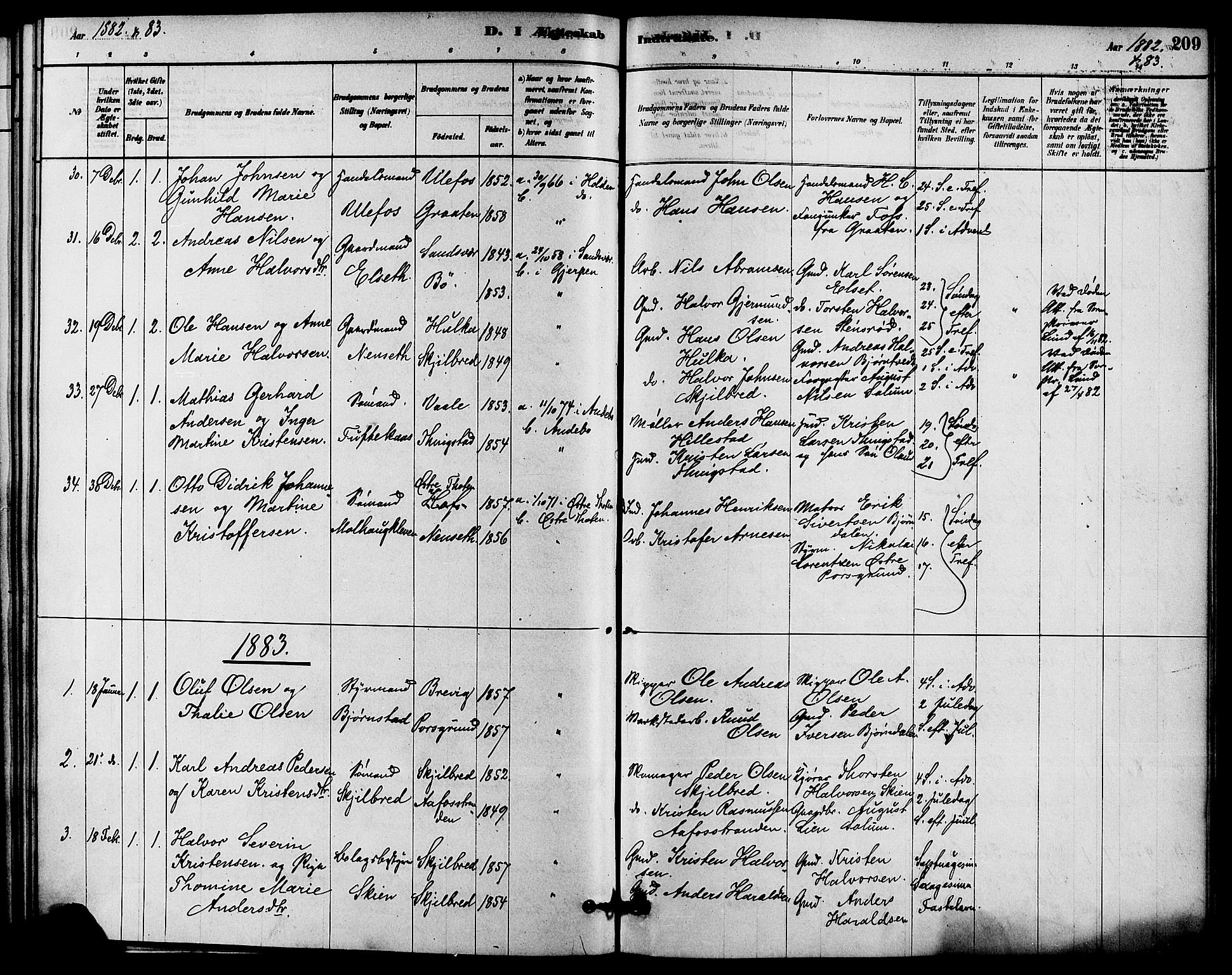 SAKO, Solum kirkebøker, F/Fa/L0009: Ministerialbok nr. I 9, 1877-1887, s. 209