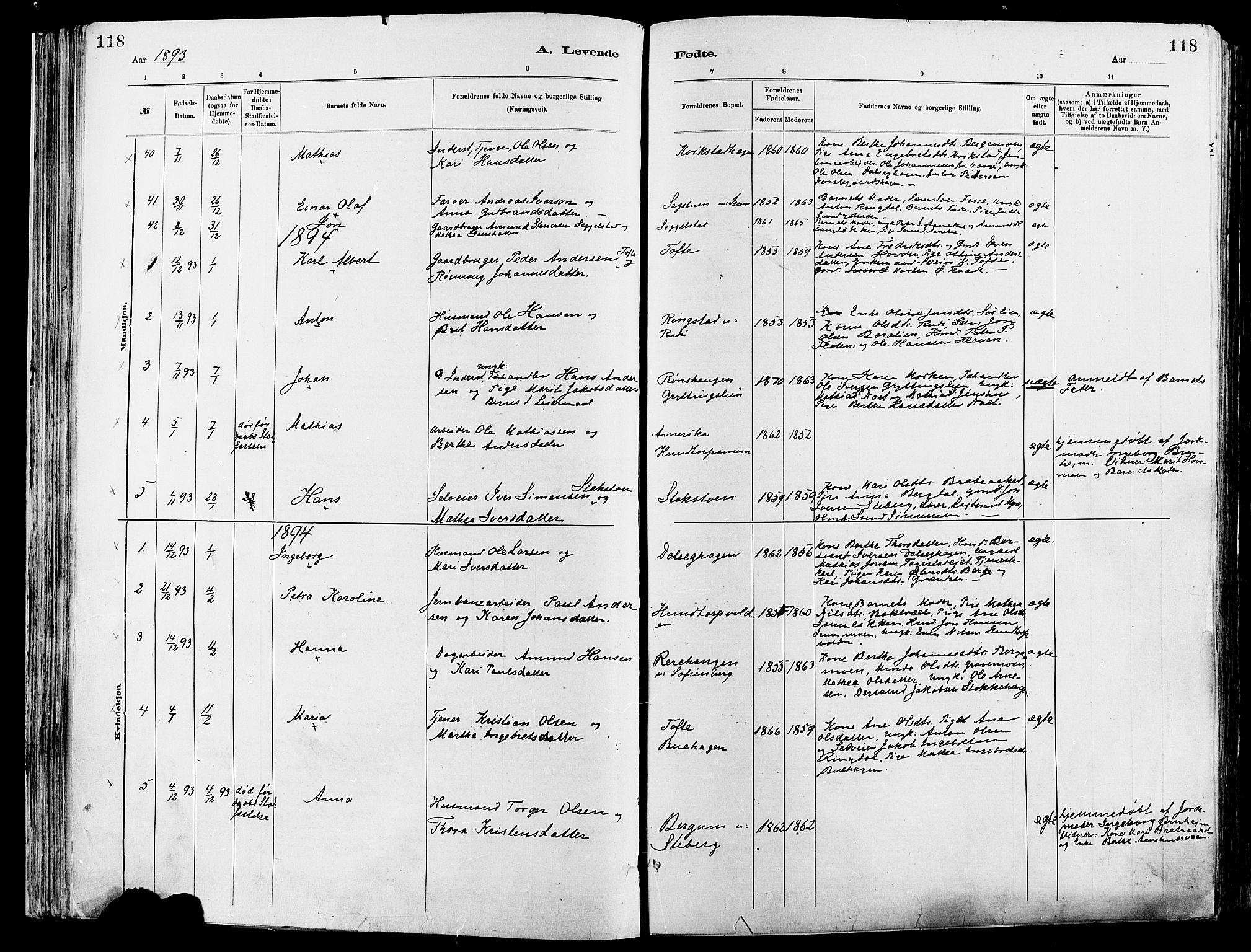 SAH, Sør-Fron prestekontor, H/Ha/Haa/L0003: Ministerialbok nr. 3, 1881-1897, s. 118