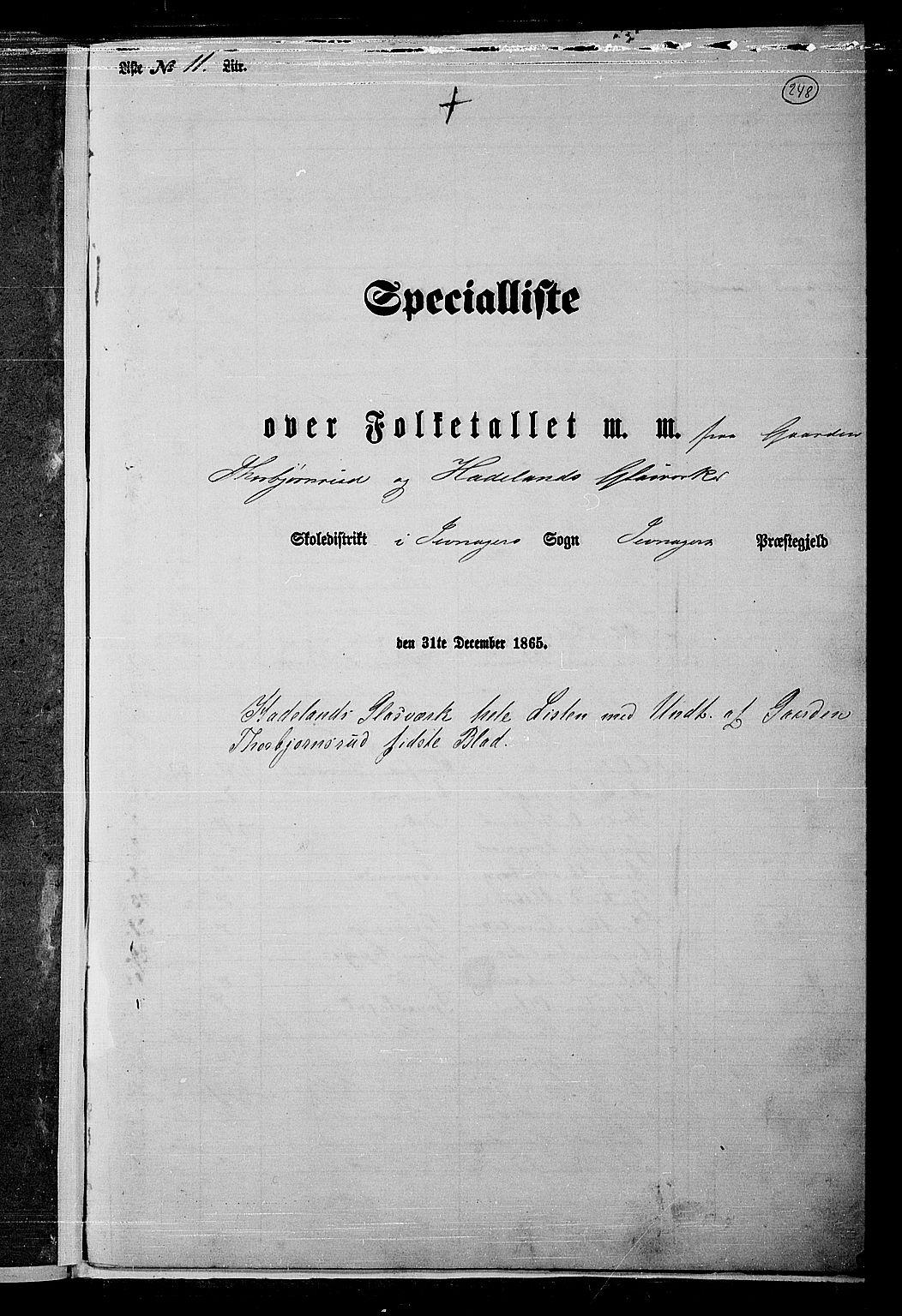 RA, Folketelling 1865 for 0532P Jevnaker prestegjeld, 1865, s. 228