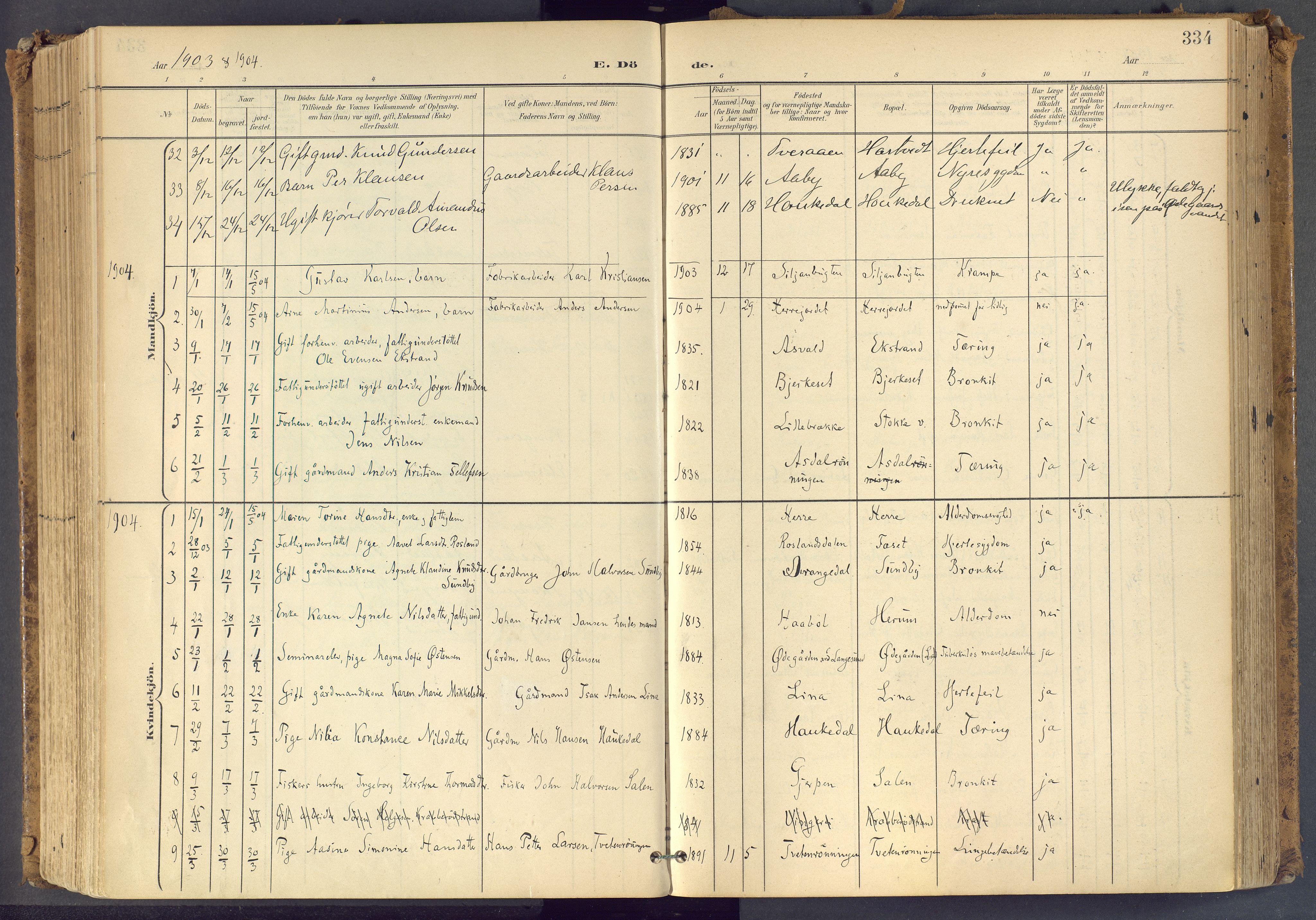 SAKO, Bamble kirkebøker, F/Fa/L0009: Ministerialbok nr. I 9, 1901-1917, s. 334