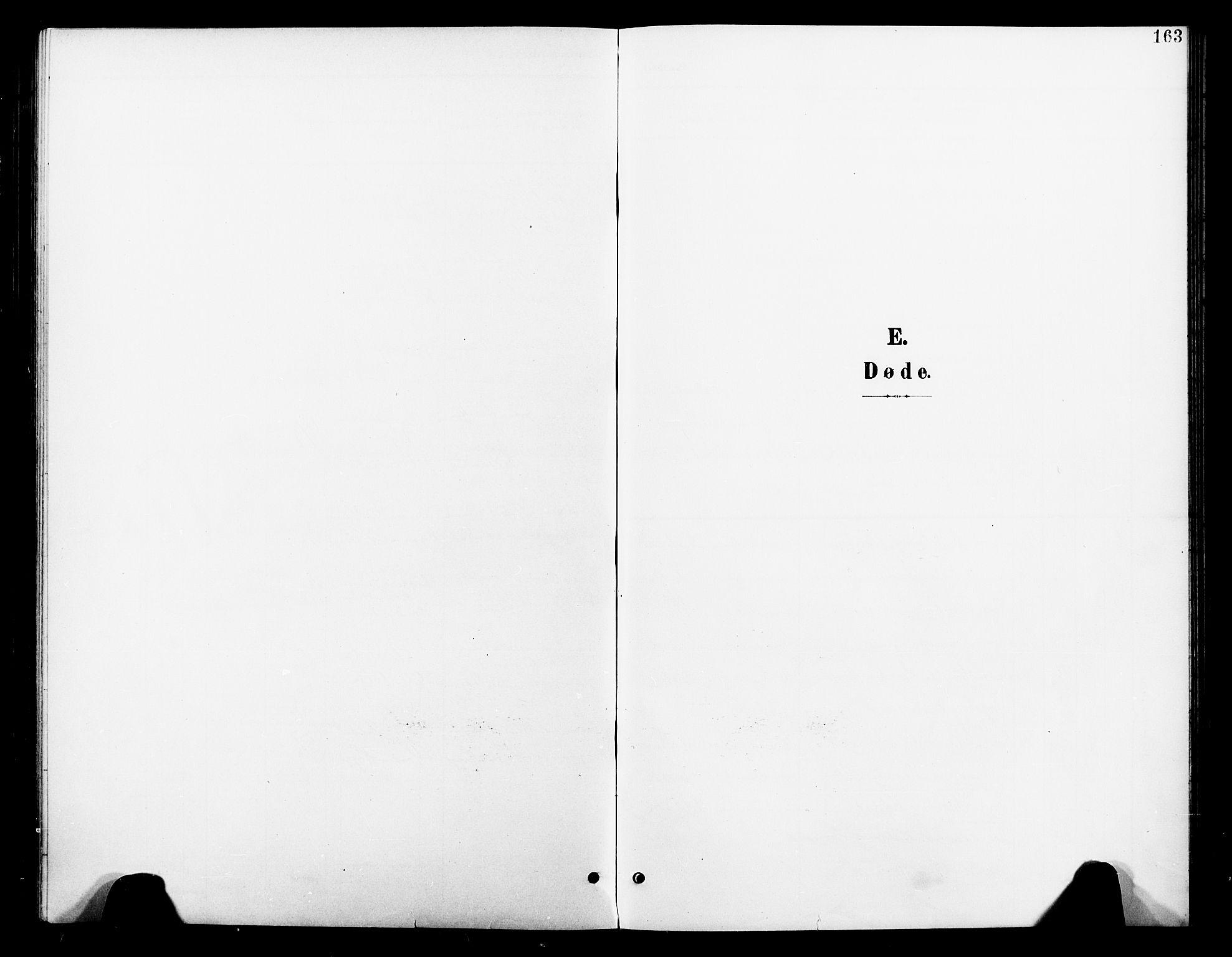 SAT, Ministerialprotokoller, klokkerbøker og fødselsregistre - Nord-Trøndelag, 739/L0375: Klokkerbok nr. 739C03, 1898-1908, s. 163