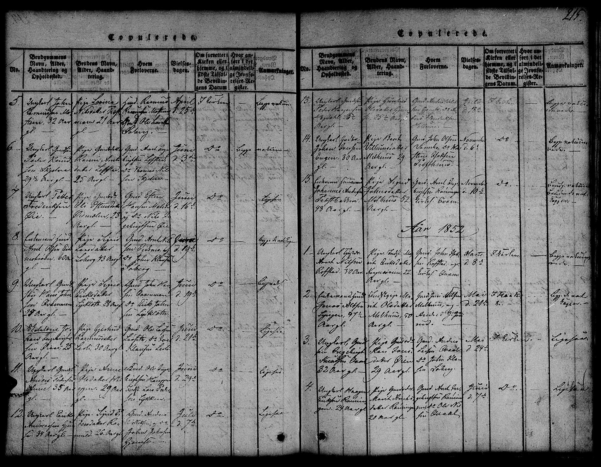 SAT, Ministerialprotokoller, klokkerbøker og fødselsregistre - Sør-Trøndelag, 691/L1092: Klokkerbok nr. 691C03, 1816-1852, s. 215