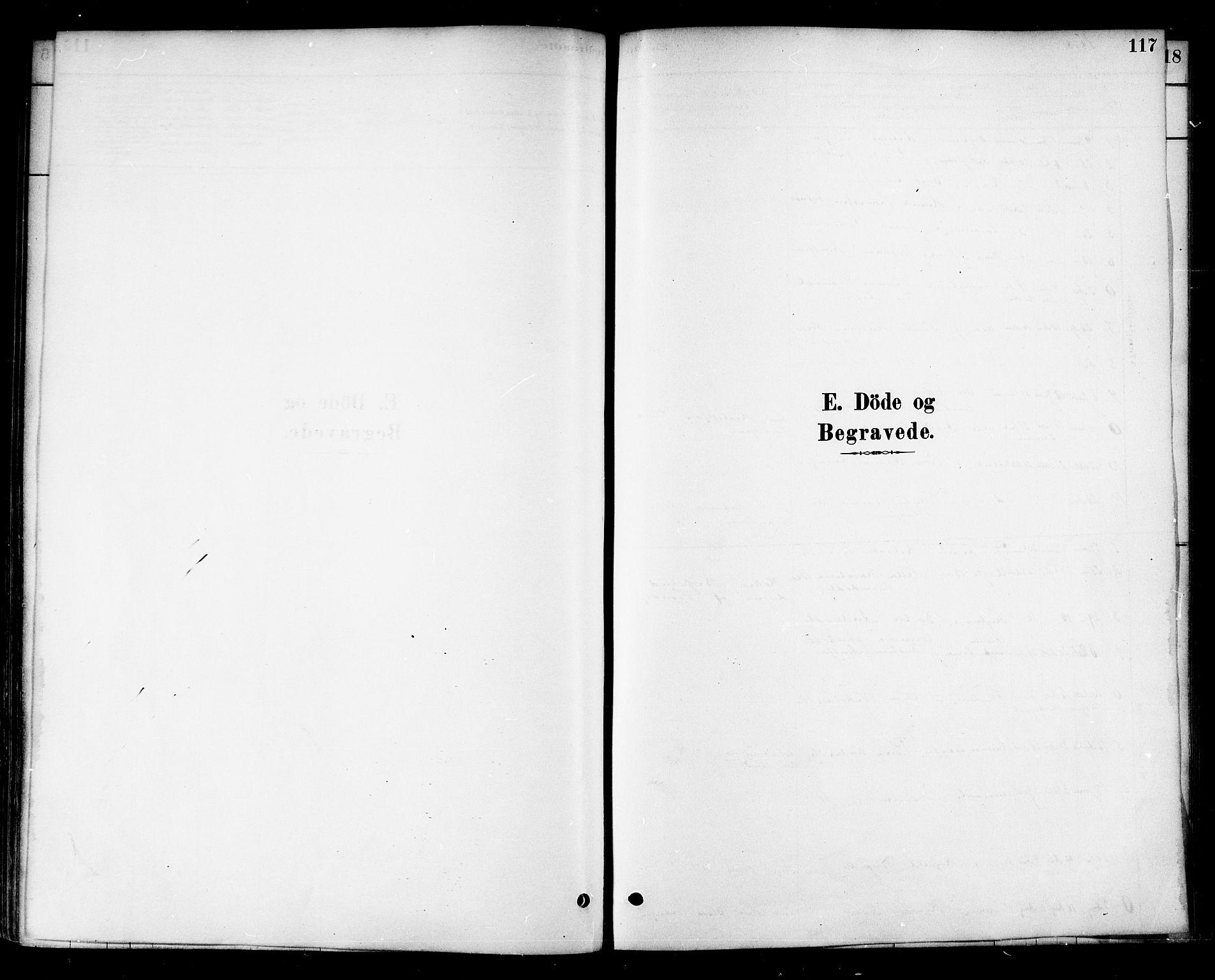 SAT, Ministerialprotokoller, klokkerbøker og fødselsregistre - Nord-Trøndelag, 741/L0395: Ministerialbok nr. 741A09, 1878-1888, s. 117