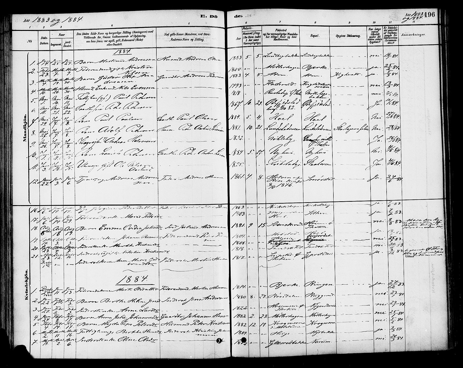SAH, Vestre Toten prestekontor, H/Ha/Haa/L0010: Ministerialbok nr. 10, 1878-1894, s. 196