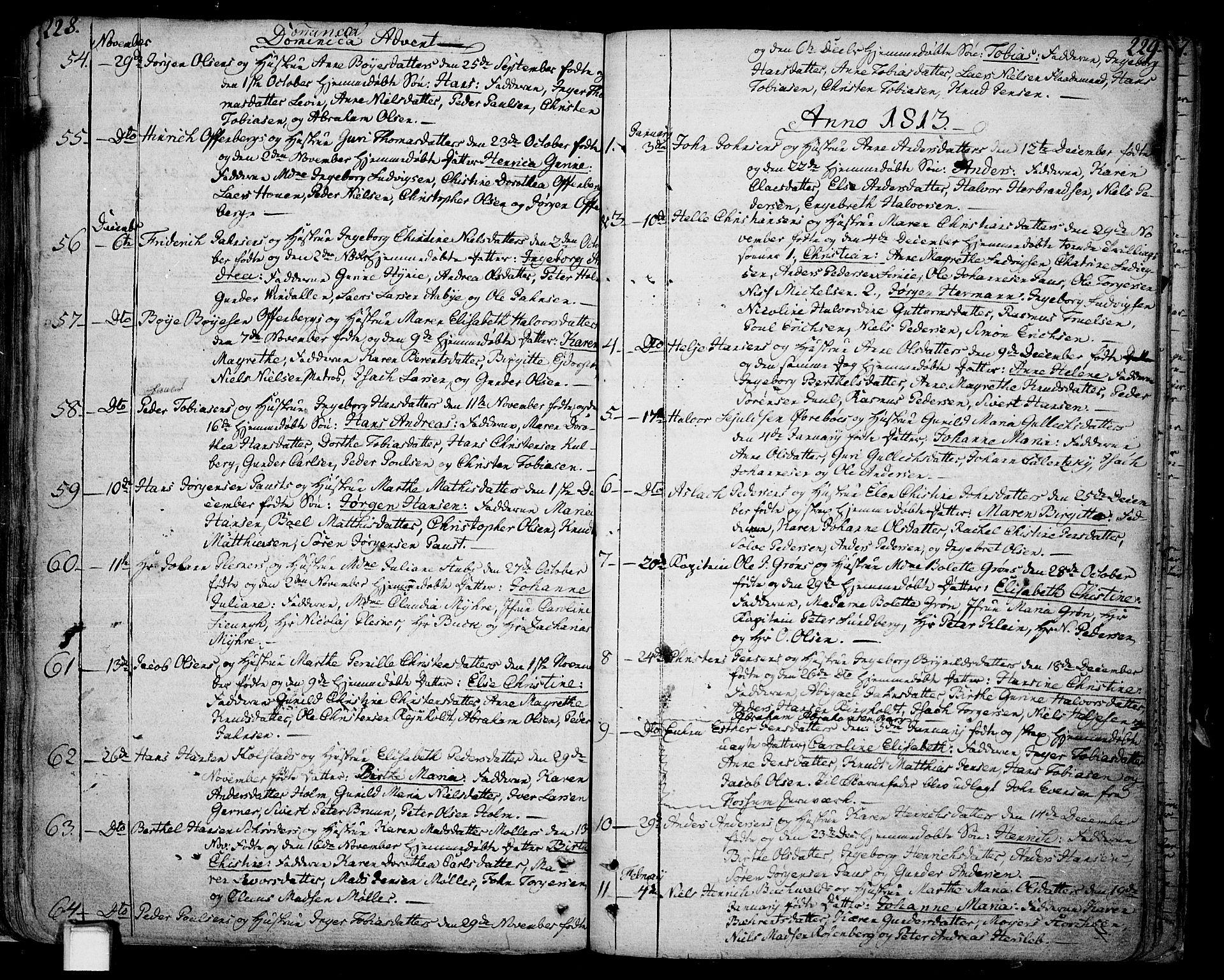 SAKO, Skien kirkebøker, F/Fa/L0004: Ministerialbok nr. 4, 1792-1814, s. 228-229