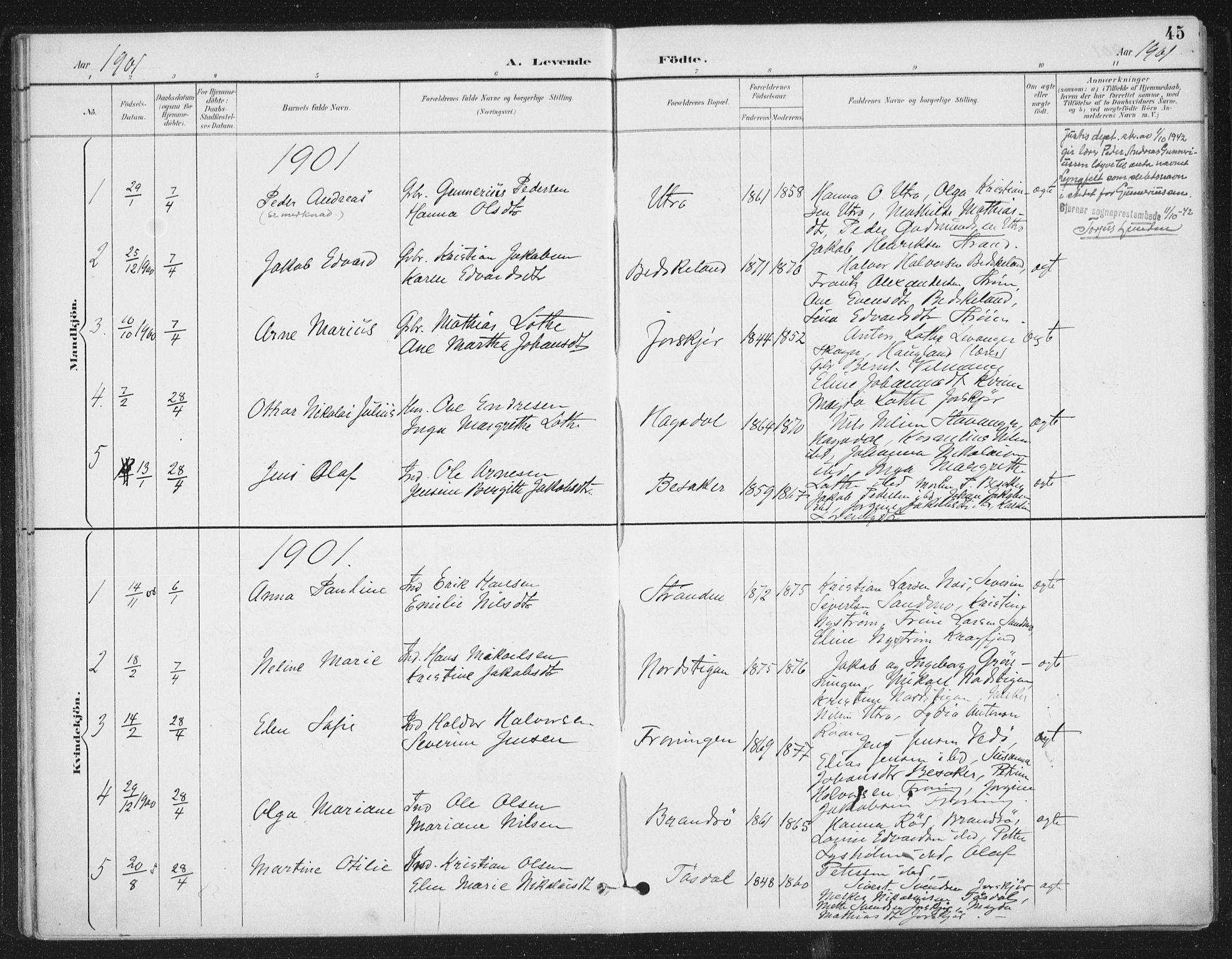 SAT, Ministerialprotokoller, klokkerbøker og fødselsregistre - Sør-Trøndelag, 657/L0708: Ministerialbok nr. 657A09, 1894-1904, s. 45