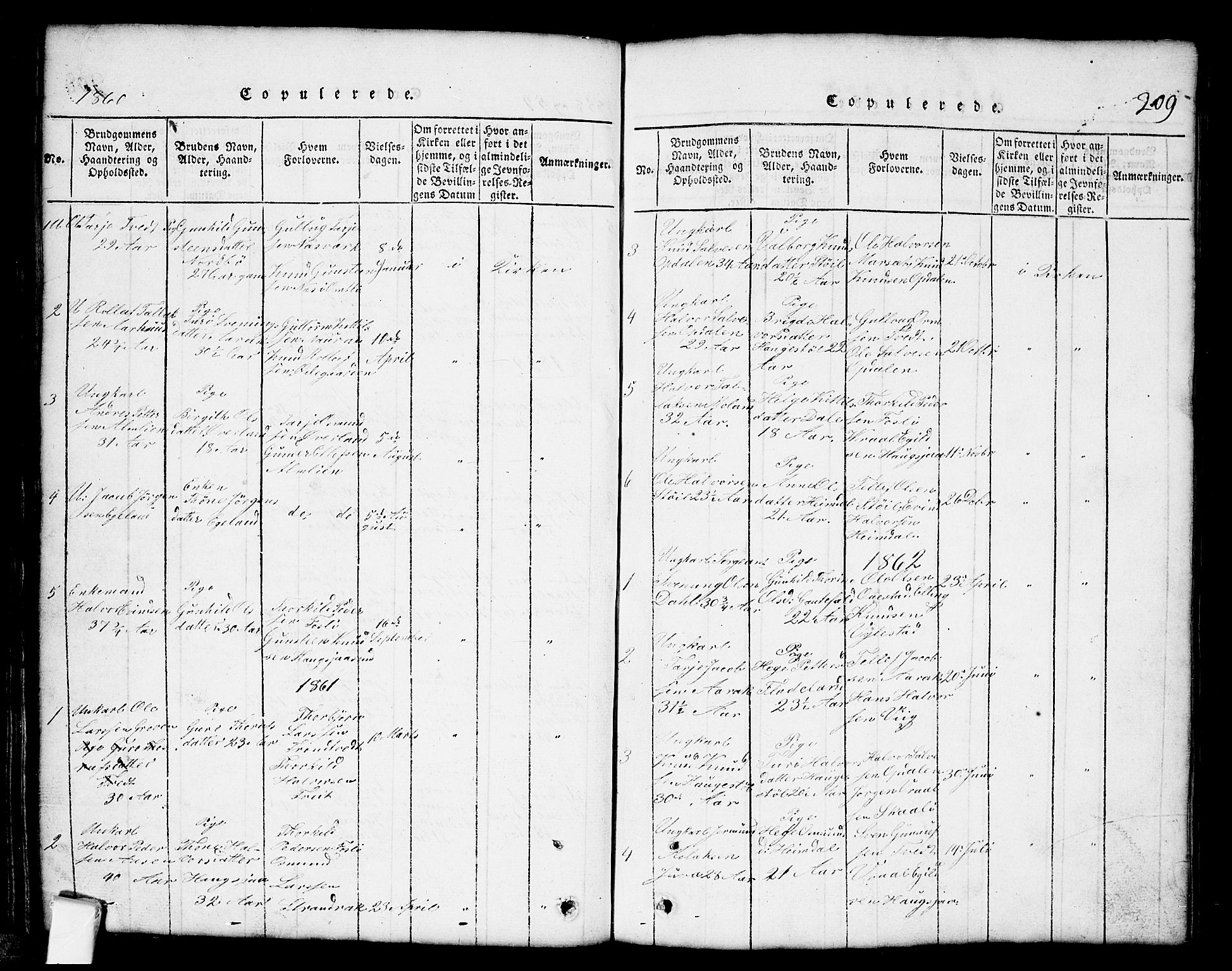SAKO, Nissedal kirkebøker, G/Gb/L0001: Klokkerbok nr. II 1, 1814-1862, s. 209