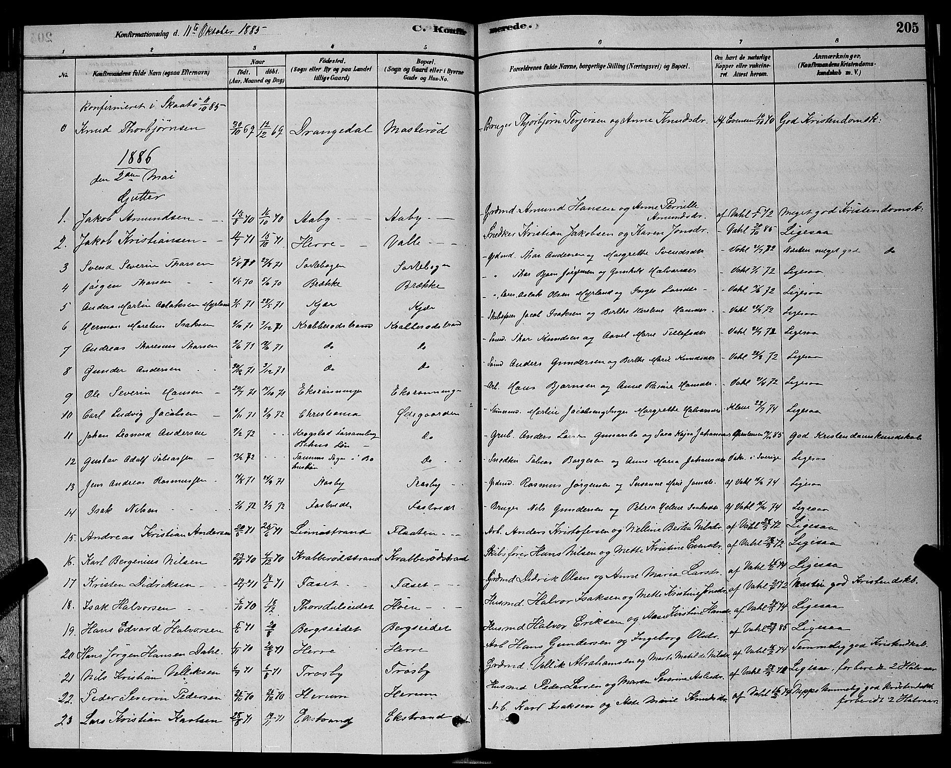 SAKO, Bamble kirkebøker, G/Ga/L0008: Klokkerbok nr. I 8, 1878-1888, s. 205