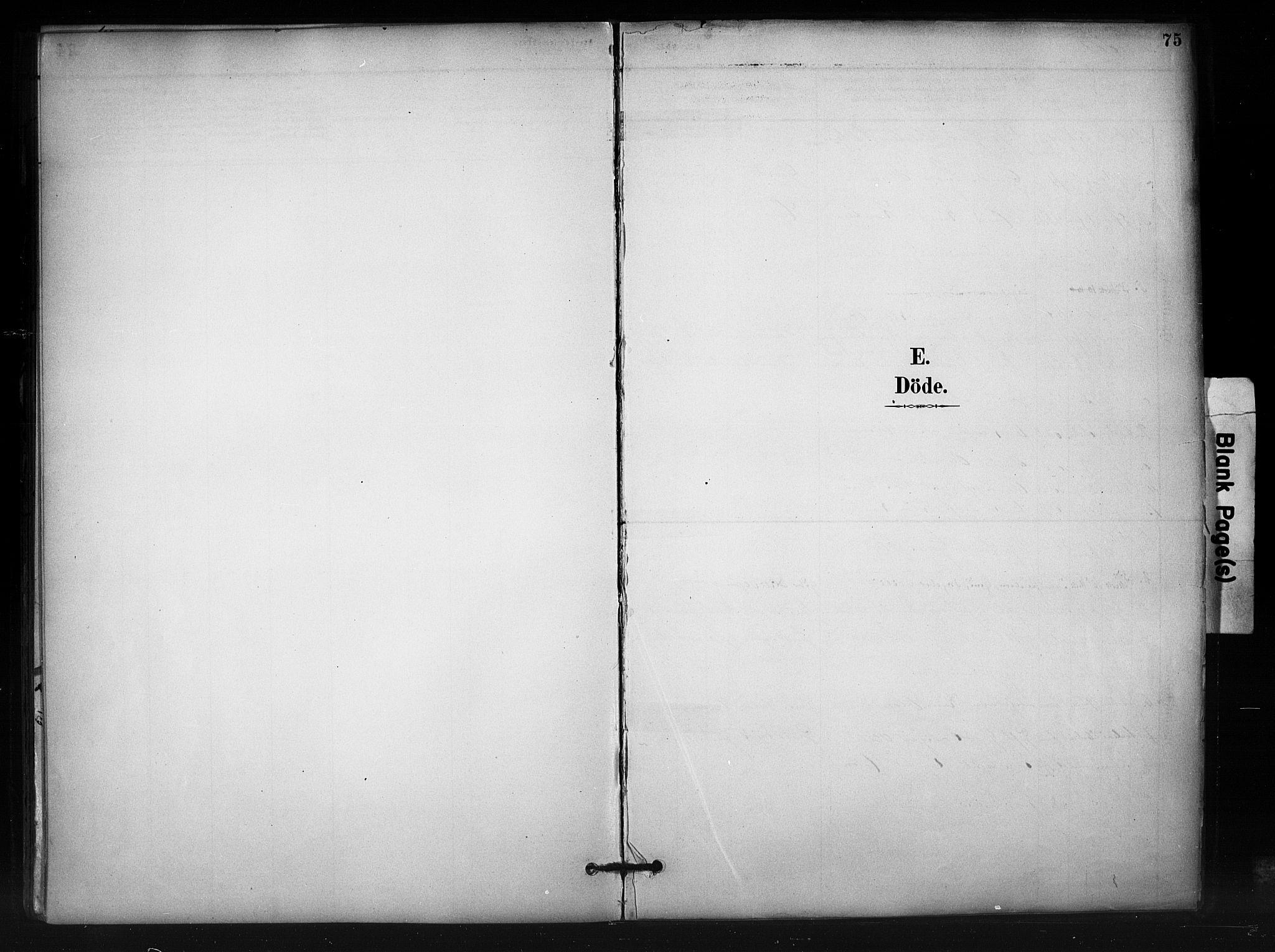 SAH, Nord-Aurdal prestekontor, Ministerialbok nr. 12, 1883-1895, s. 75