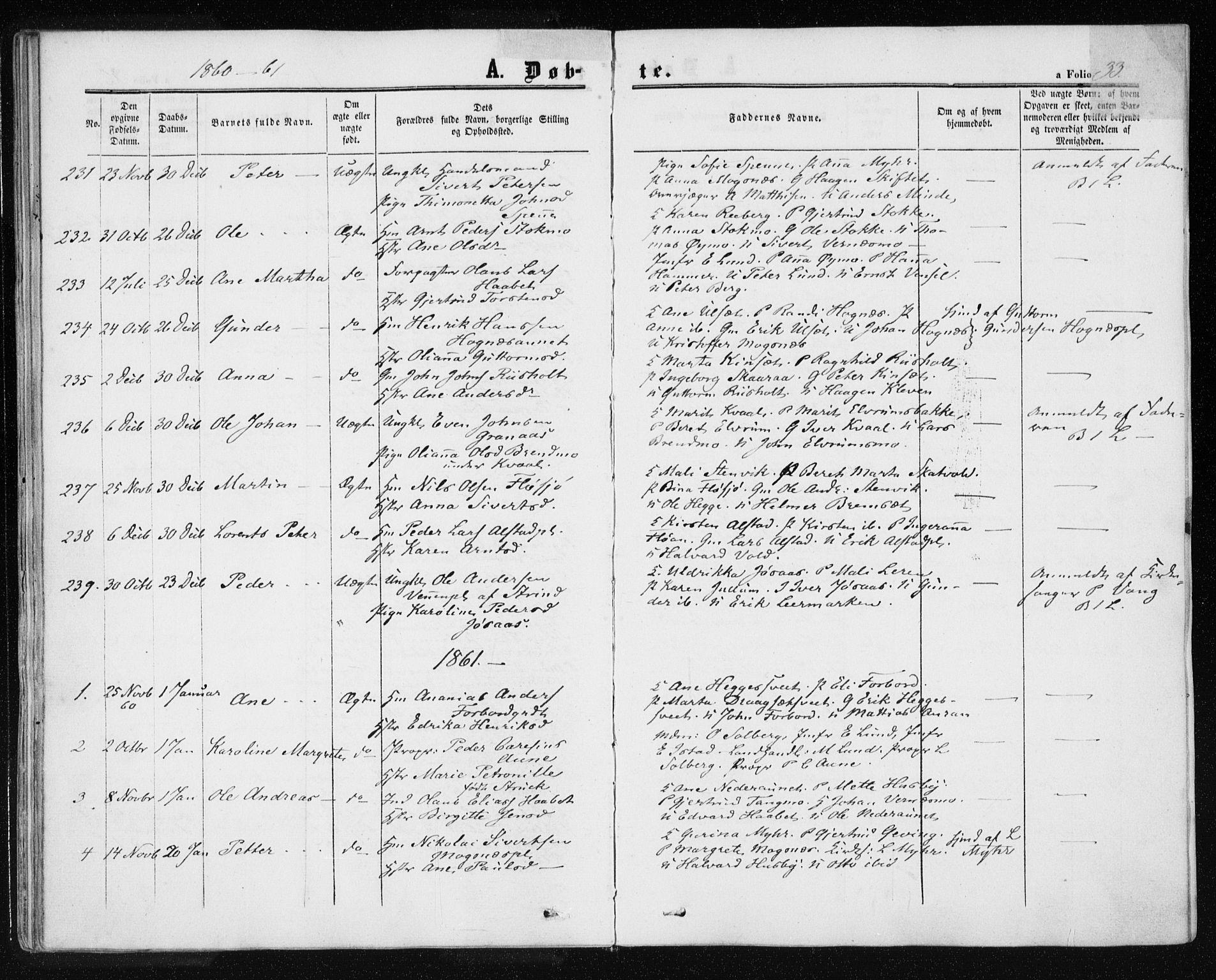 SAT, Ministerialprotokoller, klokkerbøker og fødselsregistre - Nord-Trøndelag, 709/L0075: Ministerialbok nr. 709A15, 1859-1870, s. 33
