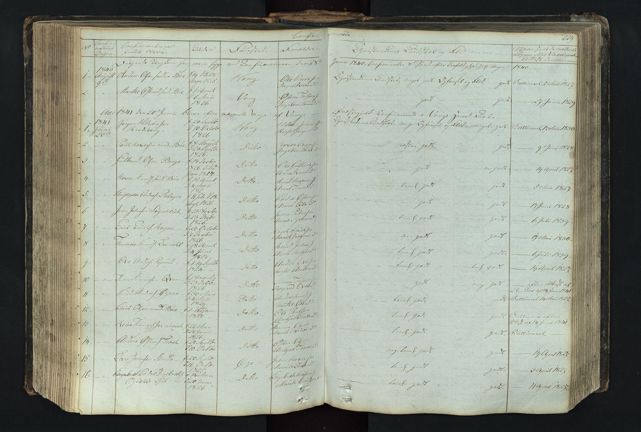 SAH, Vang prestekontor, Valdres, Klokkerbok nr. 4, 1835-1892, s. 229
