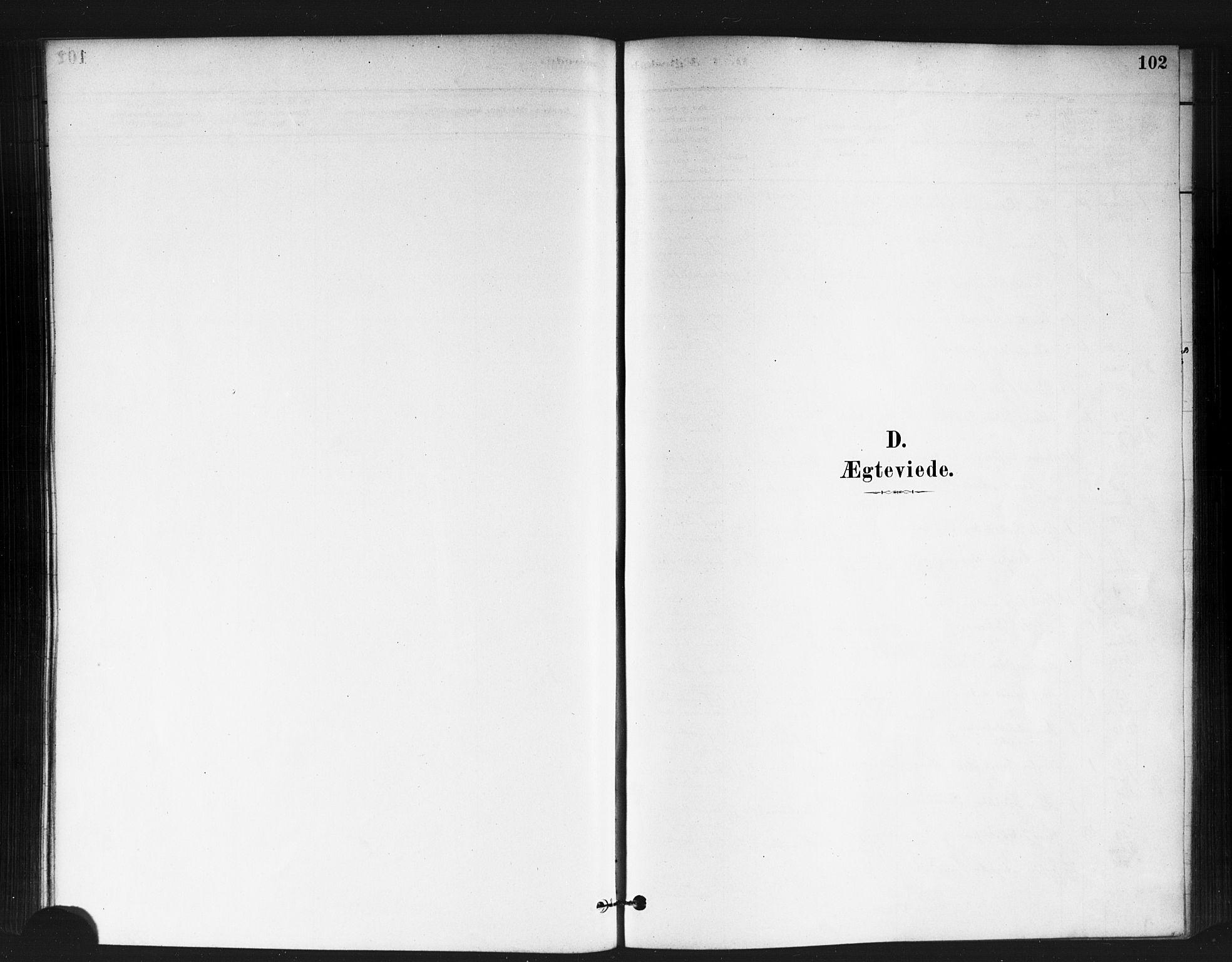 SAO, Jakob prestekontor Kirkebøker, F/Fa/L0004: Ministerialbok nr. 4, 1880-1894, s. 102
