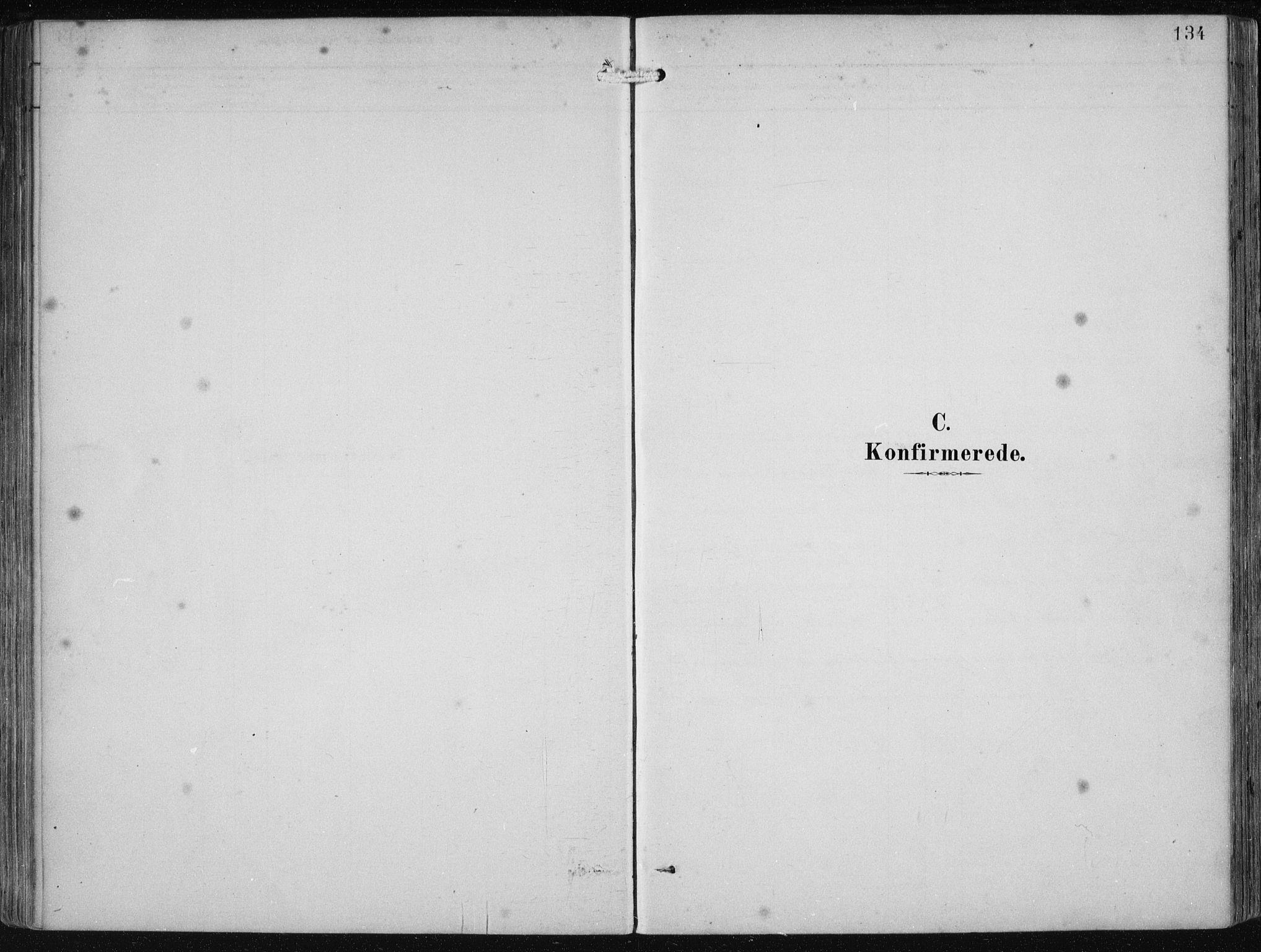 SAB, Etne Sokneprestembete, H/Haa: Ministerialbok nr. B  1, 1879-1919, s. 134