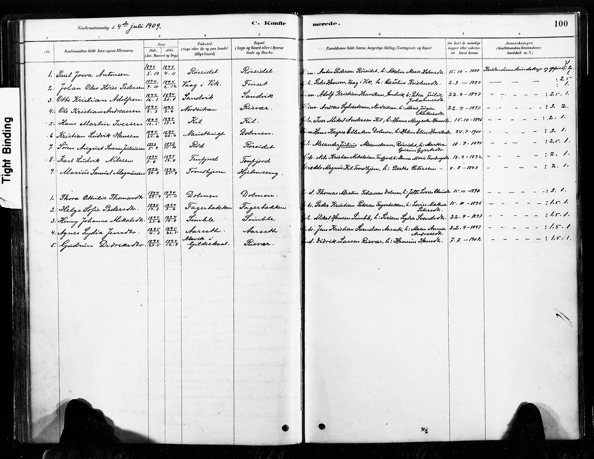 SAT, Ministerialprotokoller, klokkerbøker og fødselsregistre - Nord-Trøndelag, 789/L0705: Ministerialbok nr. 789A01, 1878-1910, s. 100