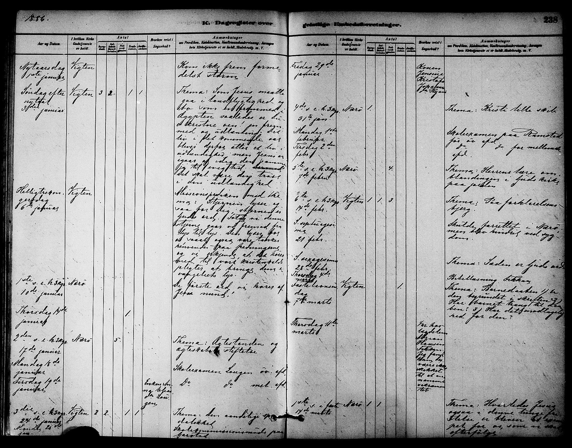 SAT, Ministerialprotokoller, klokkerbøker og fødselsregistre - Nord-Trøndelag, 784/L0672: Ministerialbok nr. 784A07, 1880-1887, s. 238
