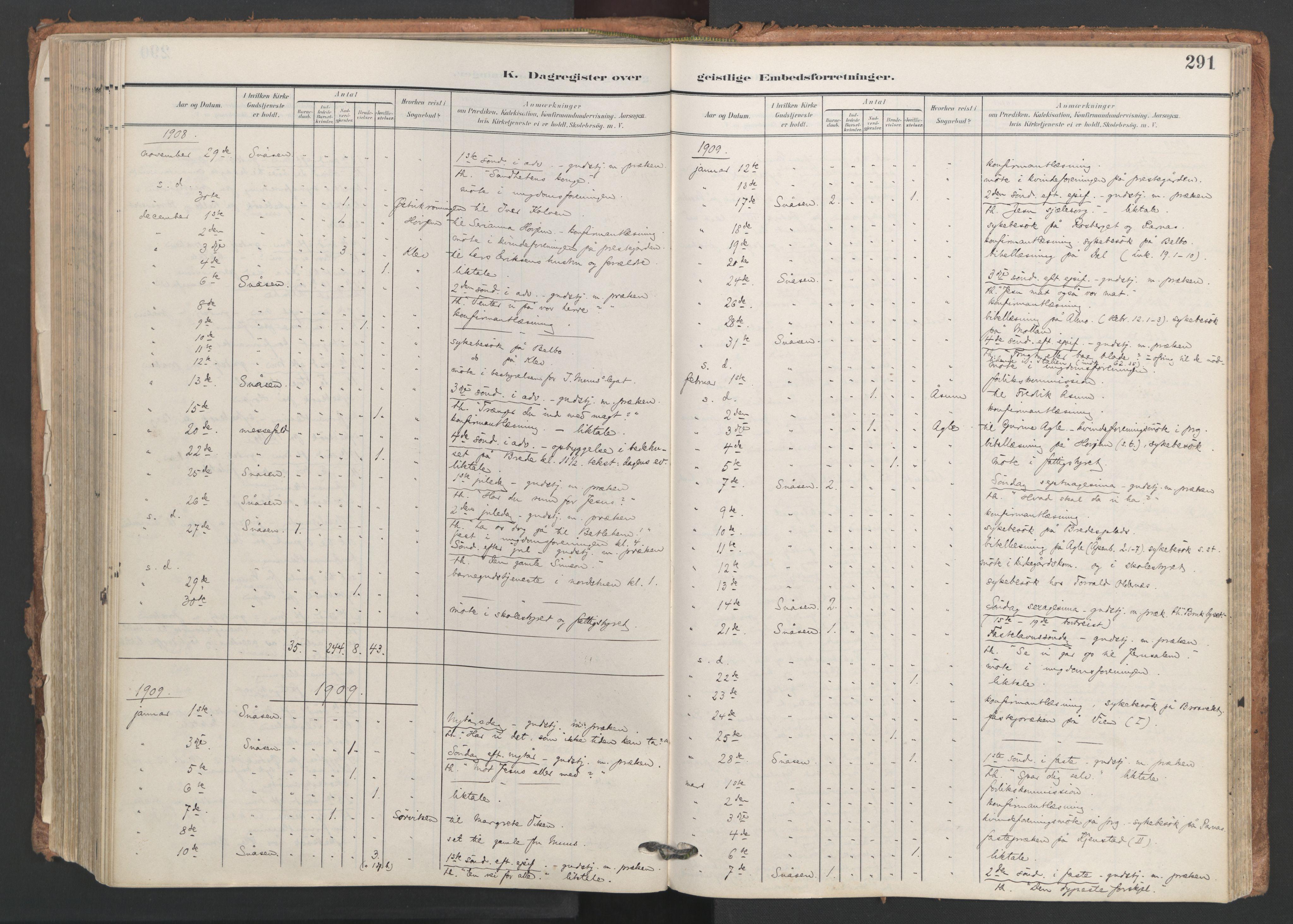 SAT, Ministerialprotokoller, klokkerbøker og fødselsregistre - Nord-Trøndelag, 749/L0477: Ministerialbok nr. 749A11, 1902-1927, s. 291