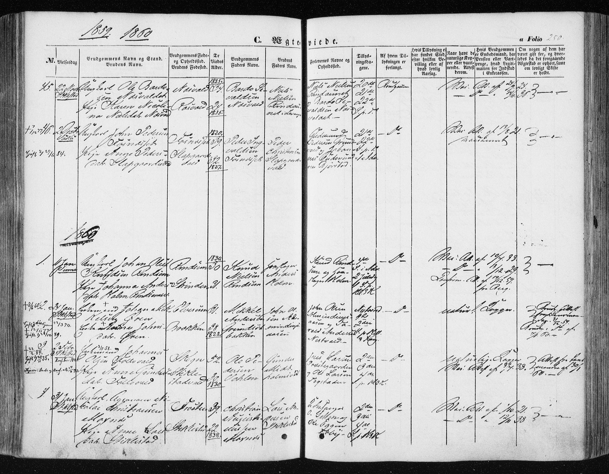 SAT, Ministerialprotokoller, klokkerbøker og fødselsregistre - Nord-Trøndelag, 723/L0240: Ministerialbok nr. 723A09, 1852-1860, s. 250