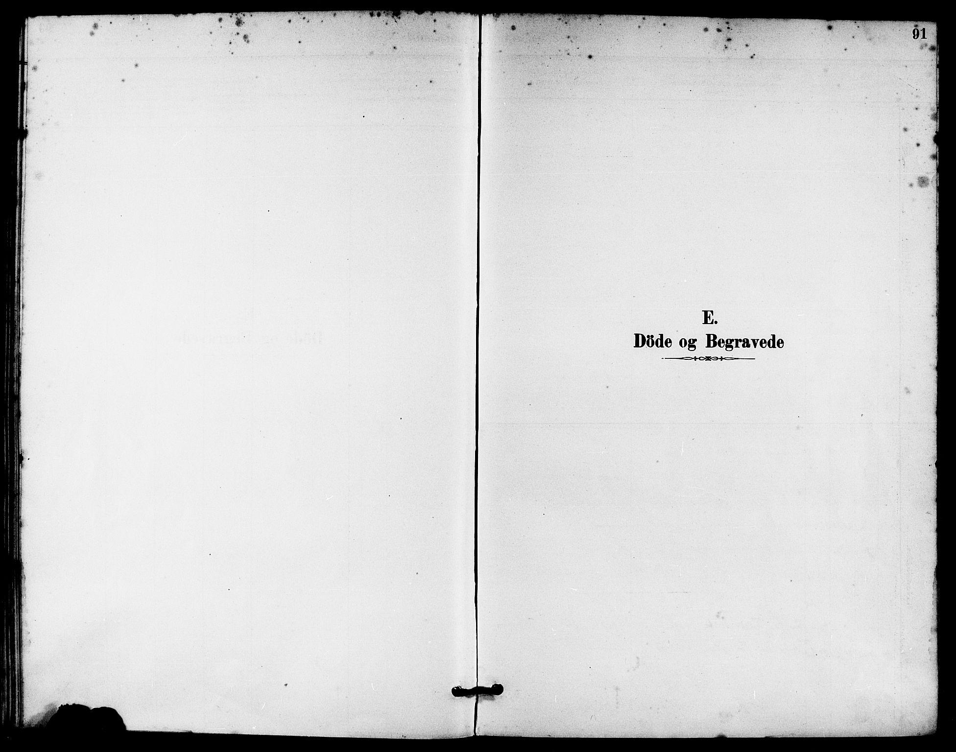 SAST, Håland sokneprestkontor, 30BA/L0010: Ministerialbok nr. A 9, 1883-1888, s. 91