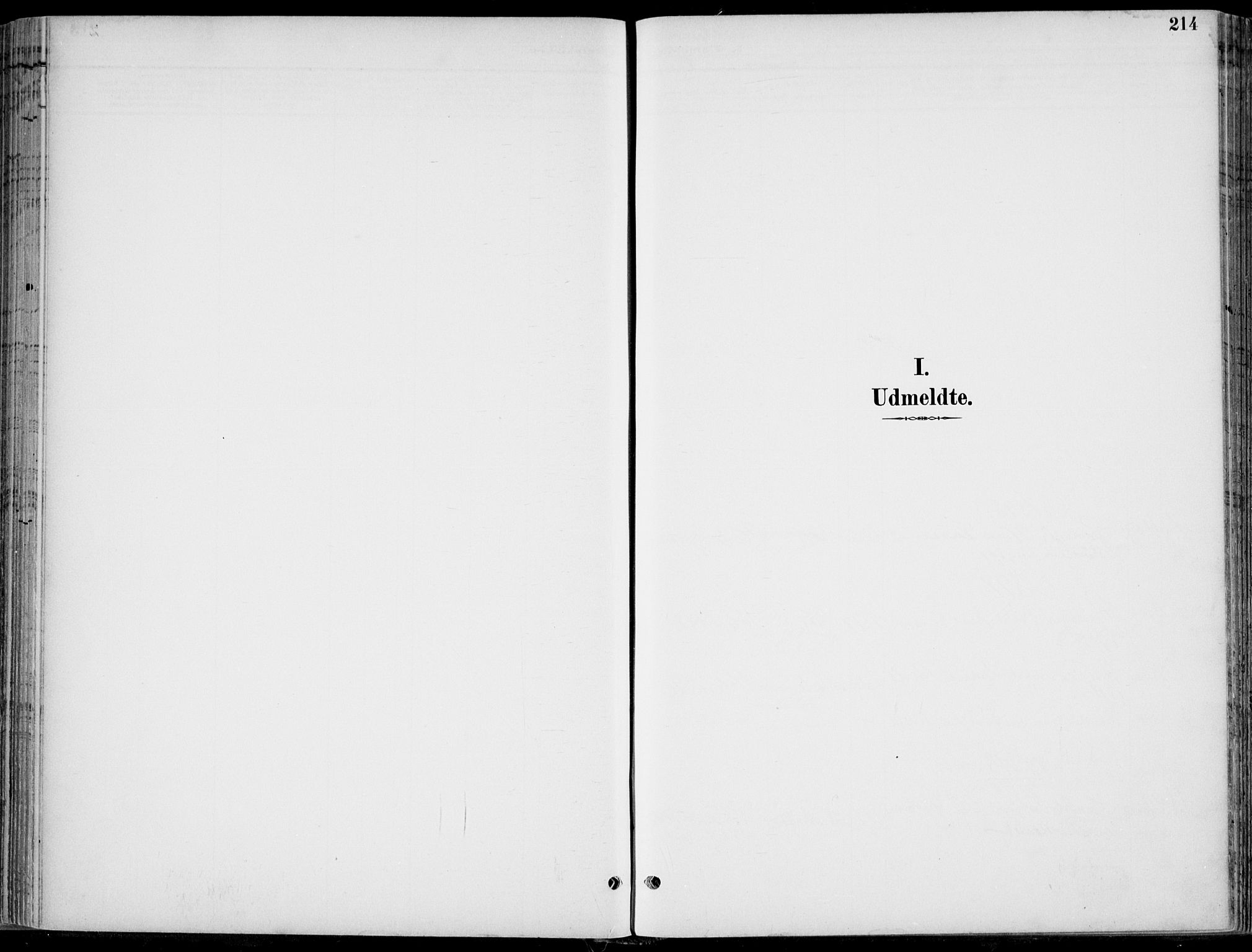 SAKO, Hole kirkebøker, F/Fa/L0009: Ministerialbok nr. I 9, 1892-1907, s. 214
