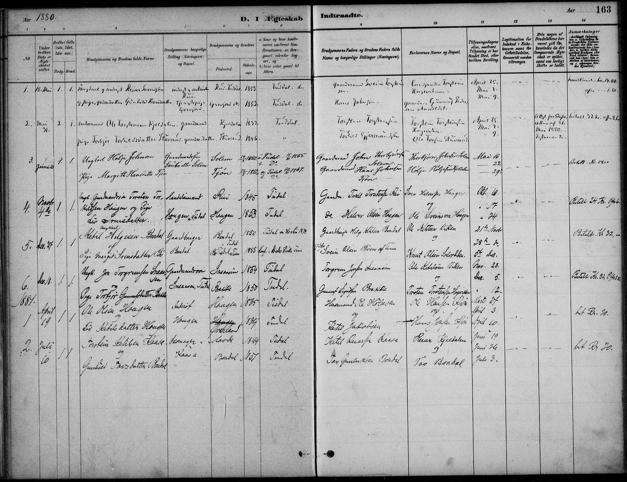 SAKO, Hjartdal kirkebøker, F/Fc/L0002: Ministerialbok nr. III 2, 1880-1936, s. 163