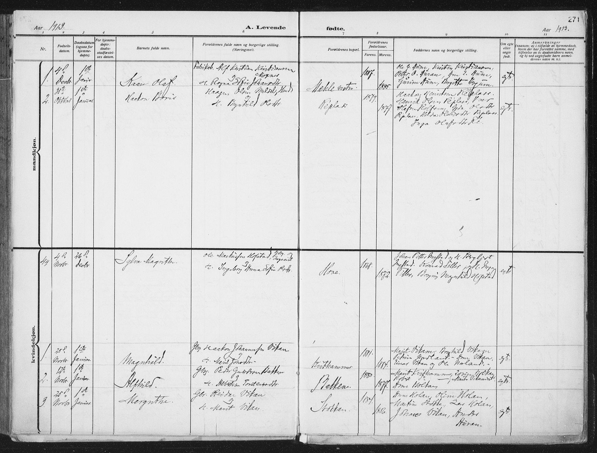 SAT, Ministerialprotokoller, klokkerbøker og fødselsregistre - Nord-Trøndelag, 709/L0082: Ministerialbok nr. 709A22, 1896-1916, s. 271
