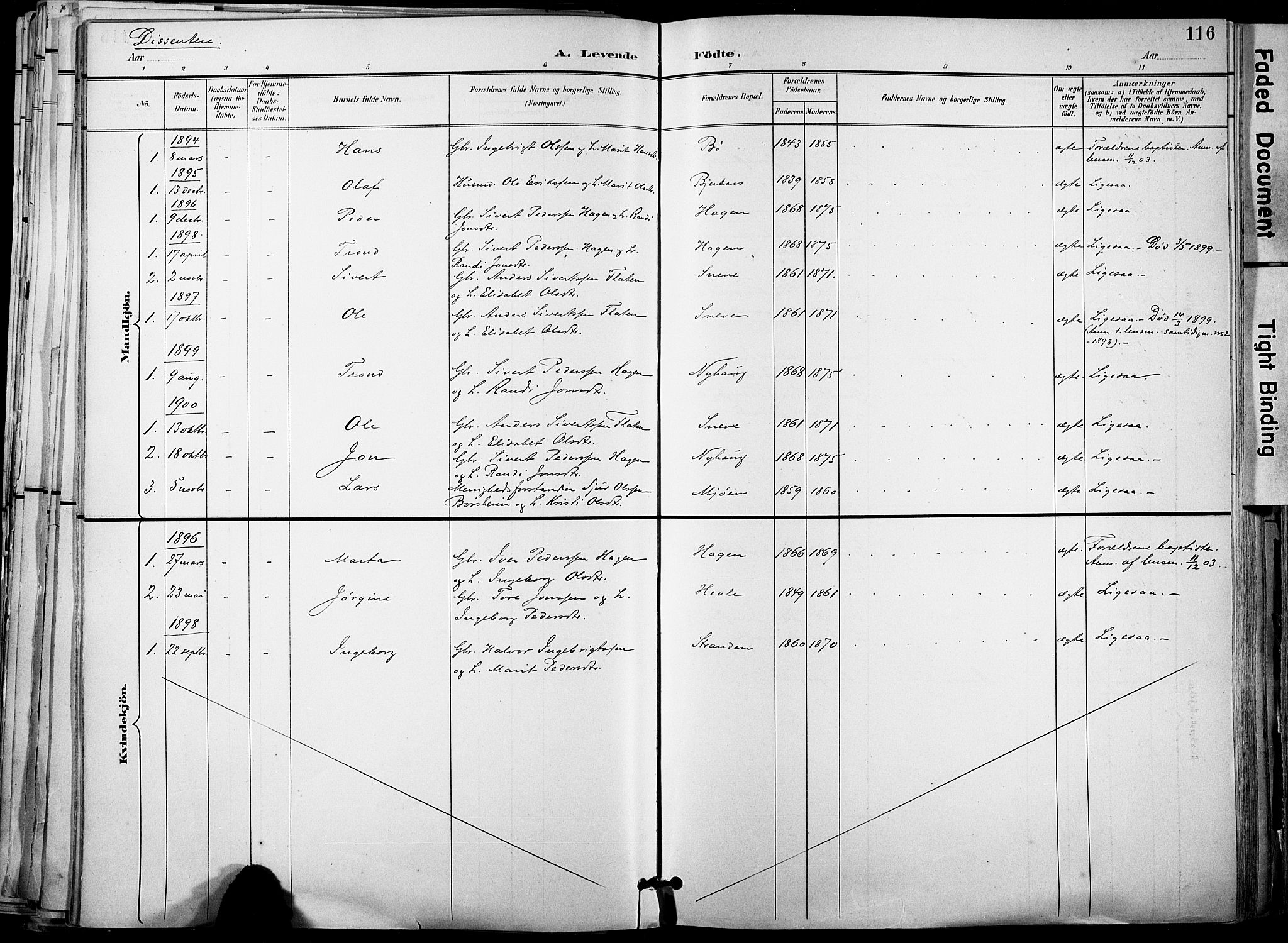 SAT, Ministerialprotokoller, klokkerbøker og fødselsregistre - Sør-Trøndelag, 678/L0902: Ministerialbok nr. 678A11, 1895-1911, s. 116