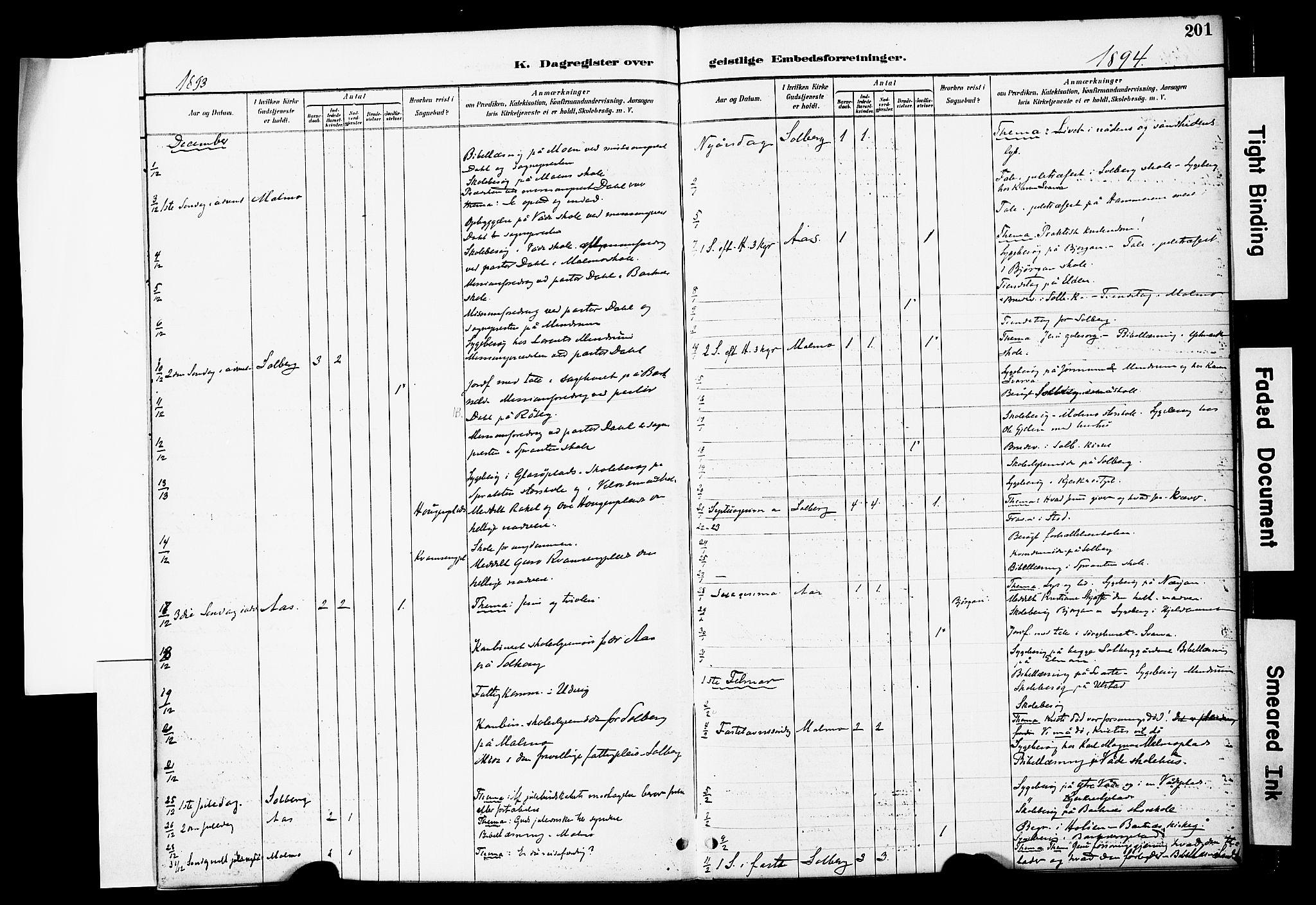 SAT, Ministerialprotokoller, klokkerbøker og fødselsregistre - Nord-Trøndelag, 741/L0396: Ministerialbok nr. 741A10, 1889-1901, s. 201