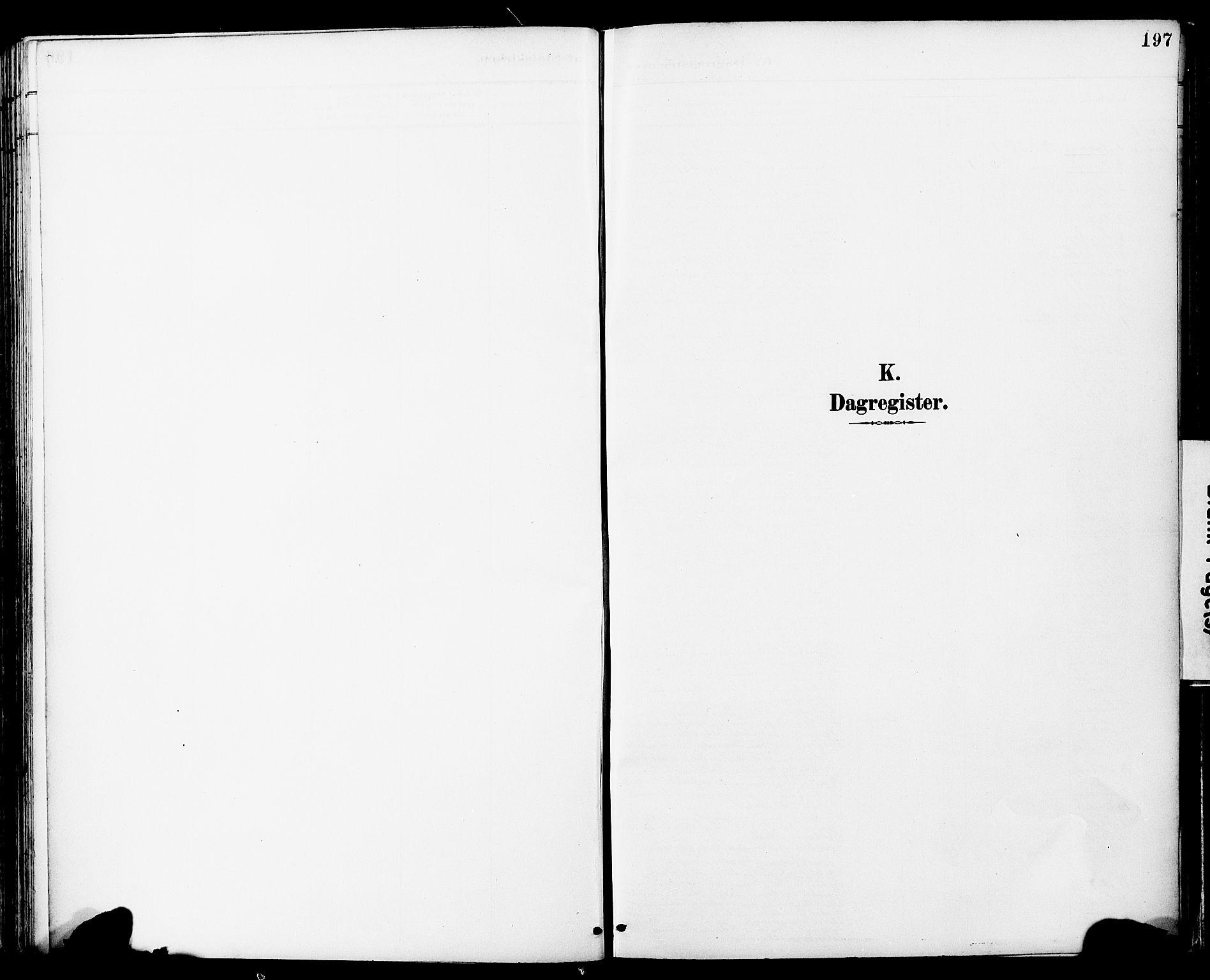 SAT, Ministerialprotokoller, klokkerbøker og fødselsregistre - Sør-Trøndelag, 681/L0935: Ministerialbok nr. 681A13, 1890-1898, s. 197