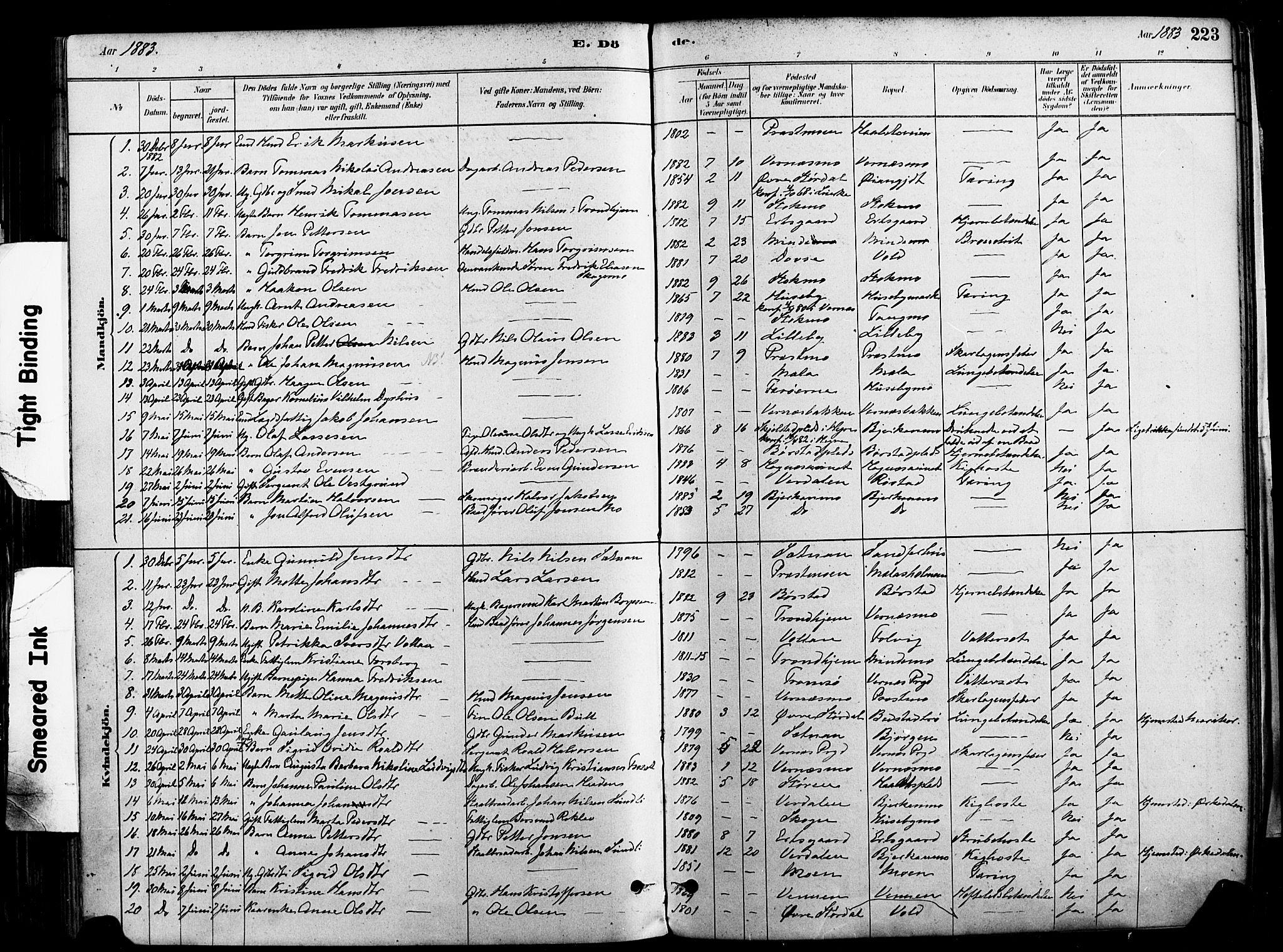 SAT, Ministerialprotokoller, klokkerbøker og fødselsregistre - Nord-Trøndelag, 709/L0077: Ministerialbok nr. 709A17, 1880-1895, s. 223