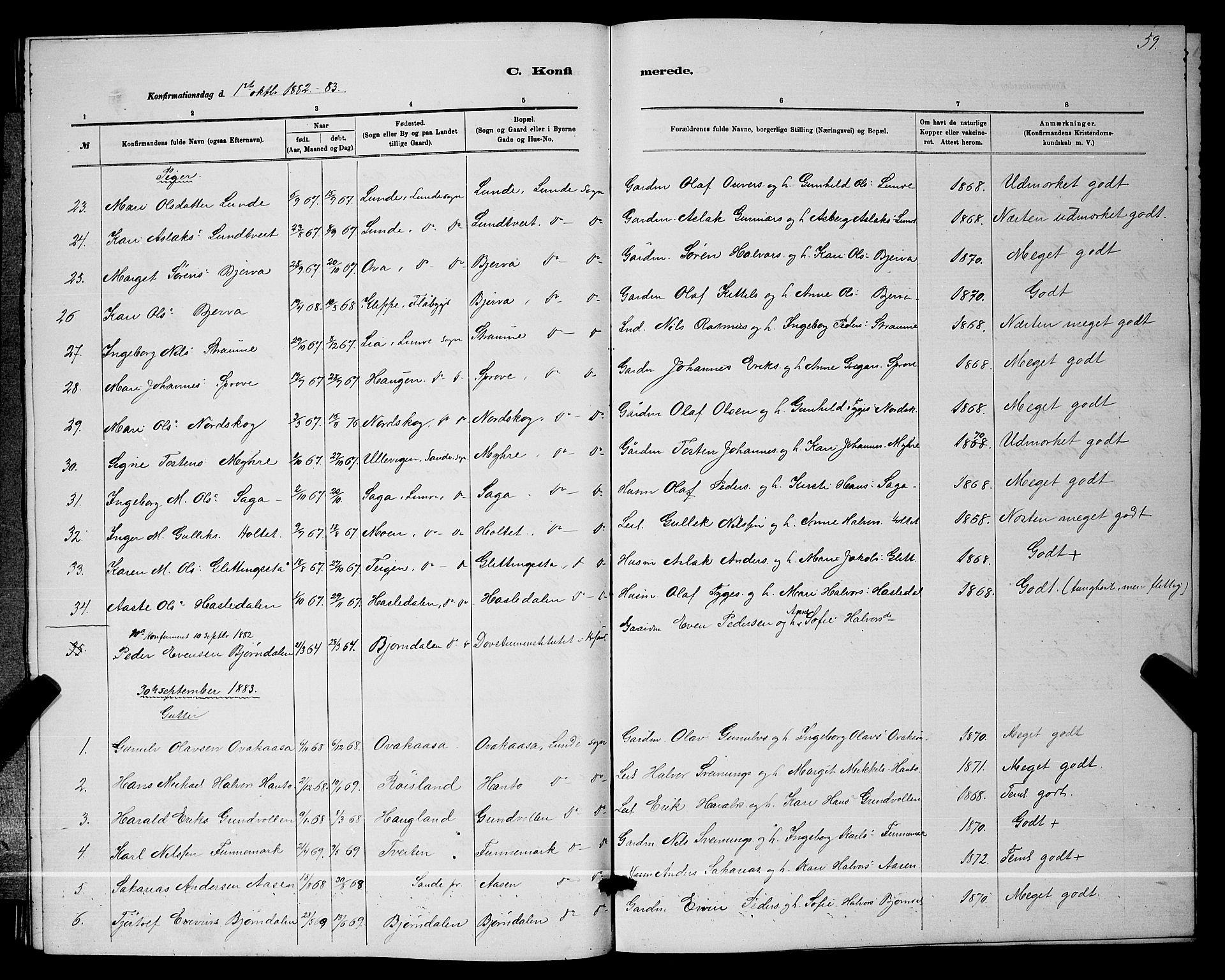 SAKO, Lunde kirkebøker, G/Ga/L0001b: Klokkerbok nr. I 1, 1879-1887, s. 59