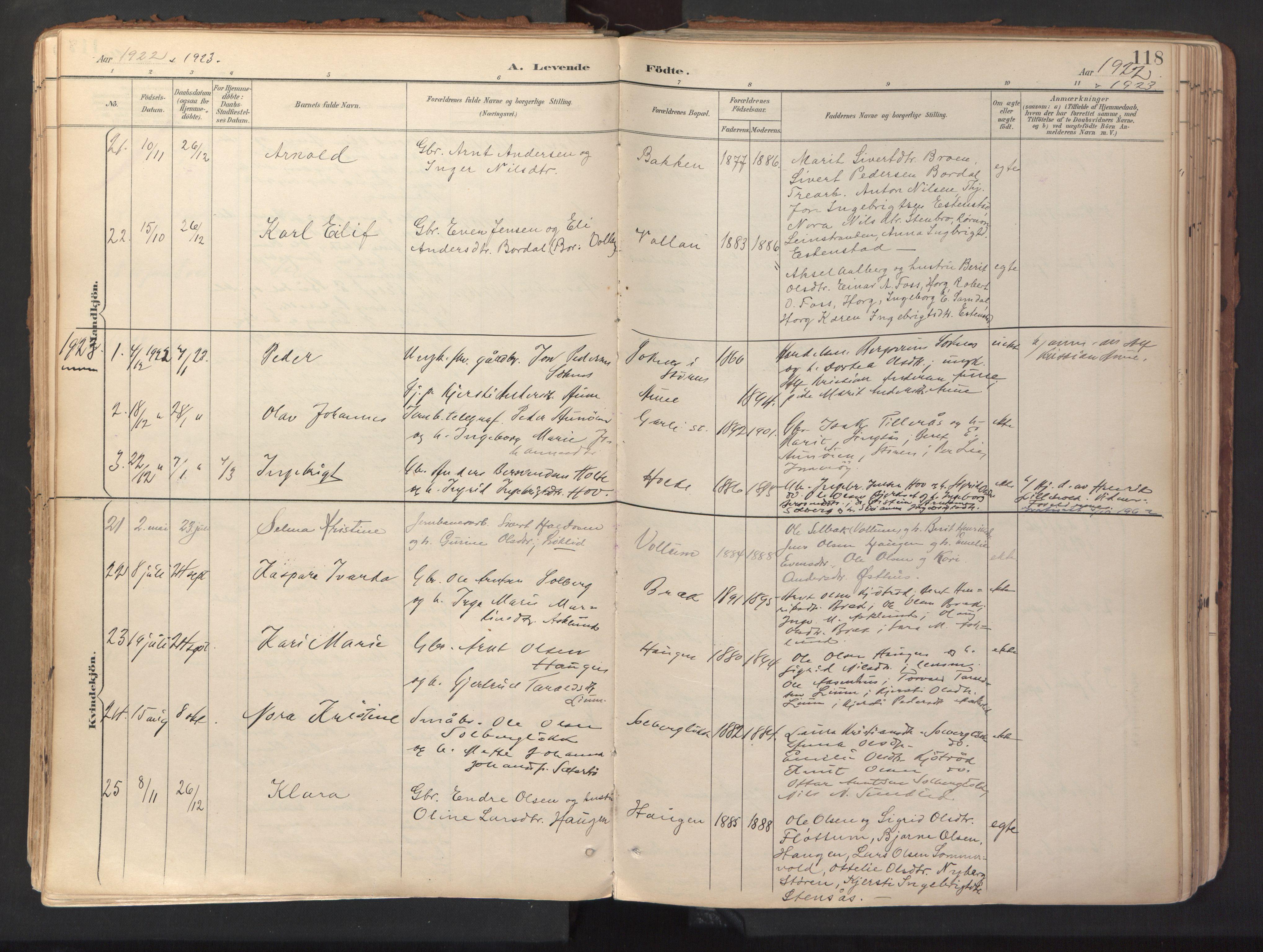 SAT, Ministerialprotokoller, klokkerbøker og fødselsregistre - Sør-Trøndelag, 689/L1041: Ministerialbok nr. 689A06, 1891-1923, s. 118