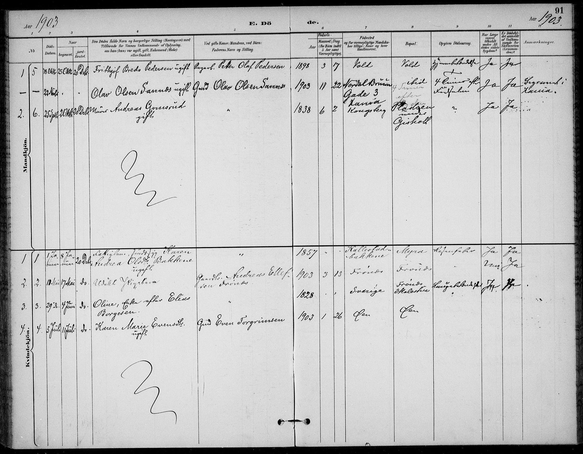 SAKO, Solum kirkebøker, F/Fc/L0002: Ministerialbok nr. III 2, 1892-1906, s. 91