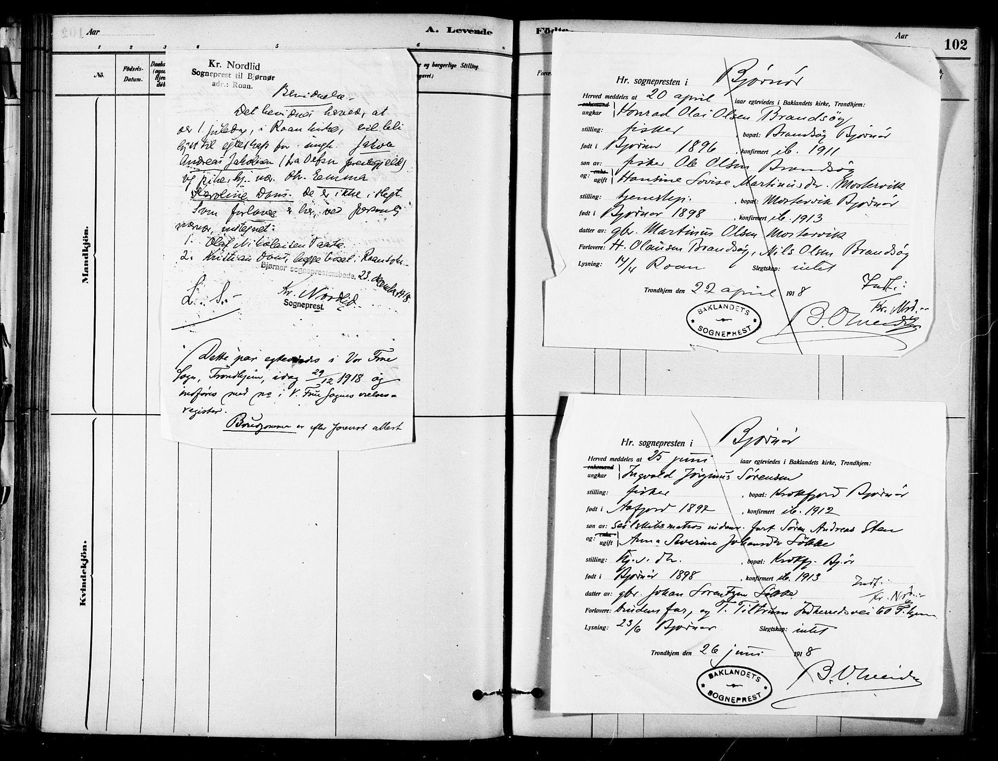 SAT, Ministerialprotokoller, klokkerbøker og fødselsregistre - Sør-Trøndelag, 657/L0707: Ministerialbok nr. 657A08, 1879-1893, s. 102