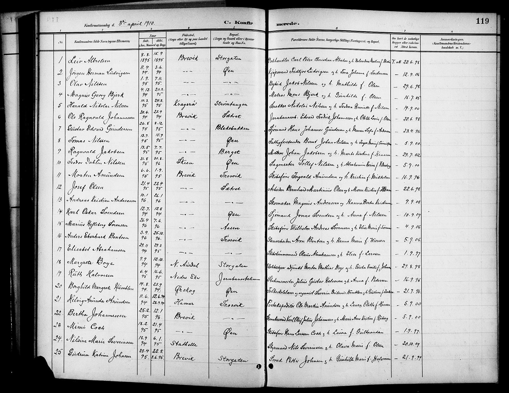SAKO, Brevik kirkebøker, G/Ga/L0005: Klokkerbok nr. 5, 1901-1924, s. 119
