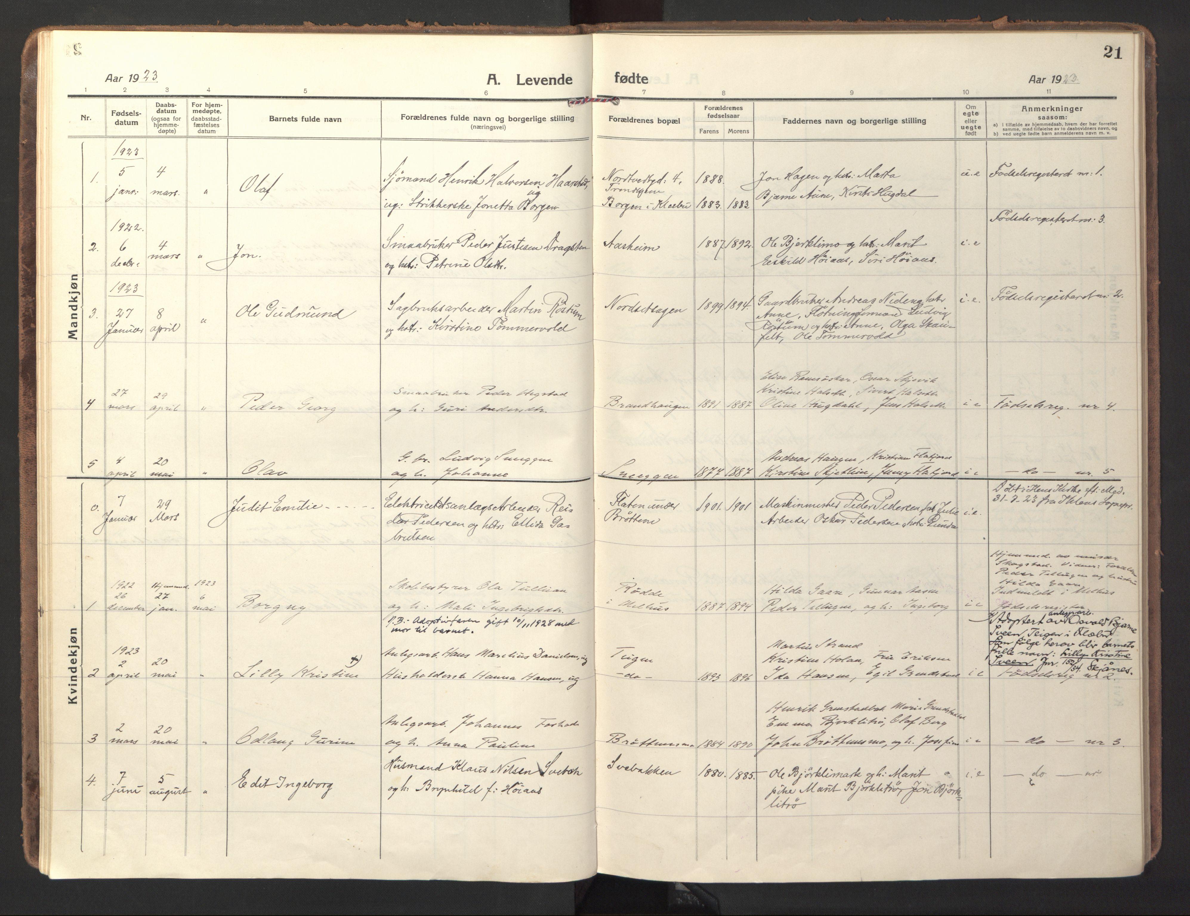 SAT, Ministerialprotokoller, klokkerbøker og fødselsregistre - Sør-Trøndelag, 618/L0449: Ministerialbok nr. 618A12, 1917-1924, s. 21